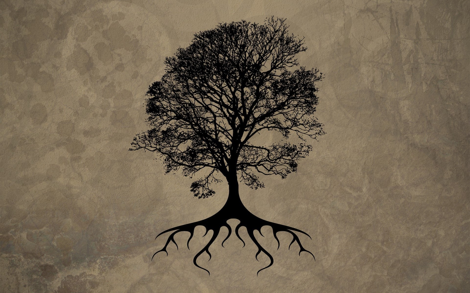 Tree Of Life Wallpaper 58 Images