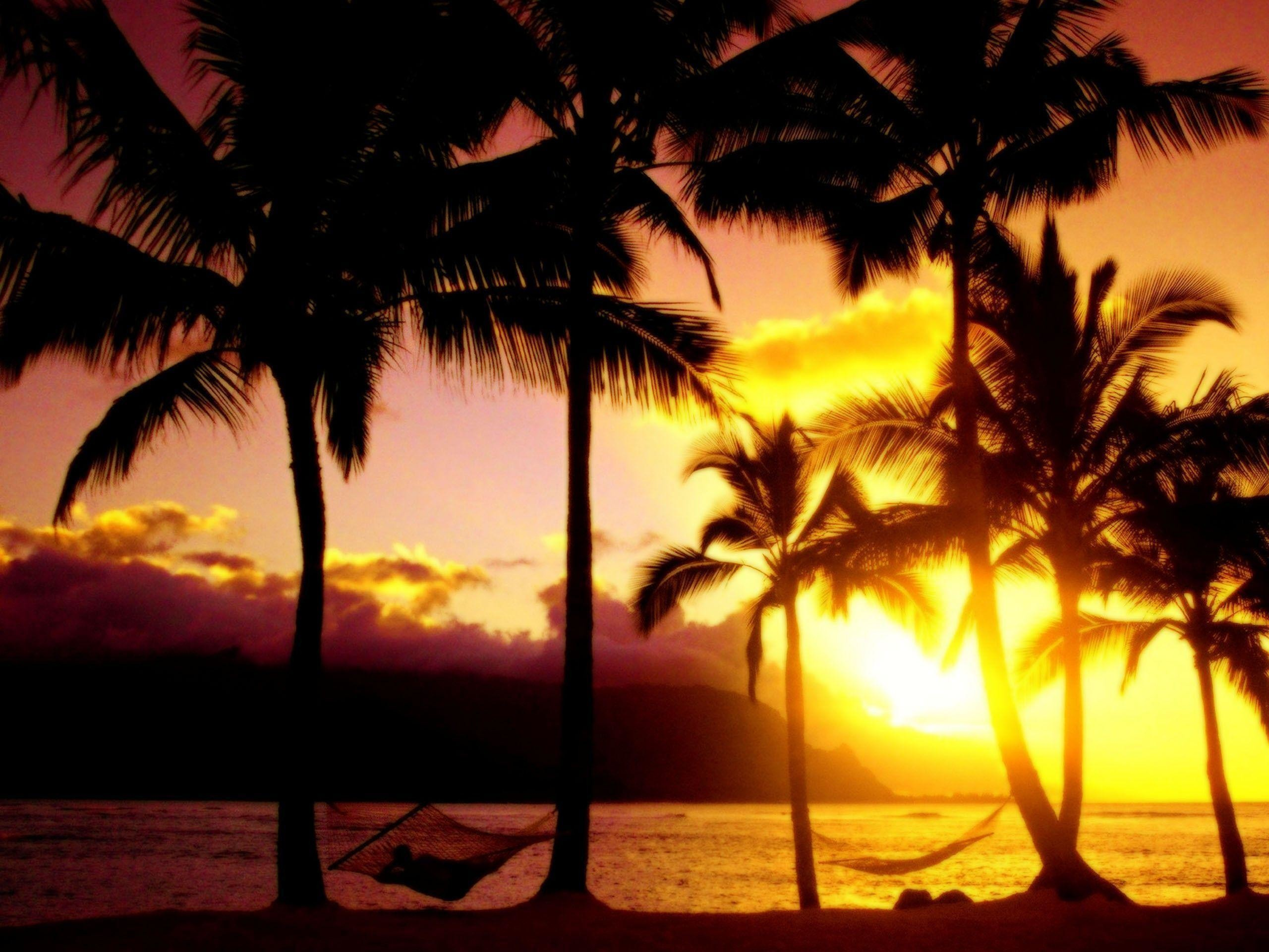 2560x1920 Beautiful Sunset Hawaii Beach Wallpaper