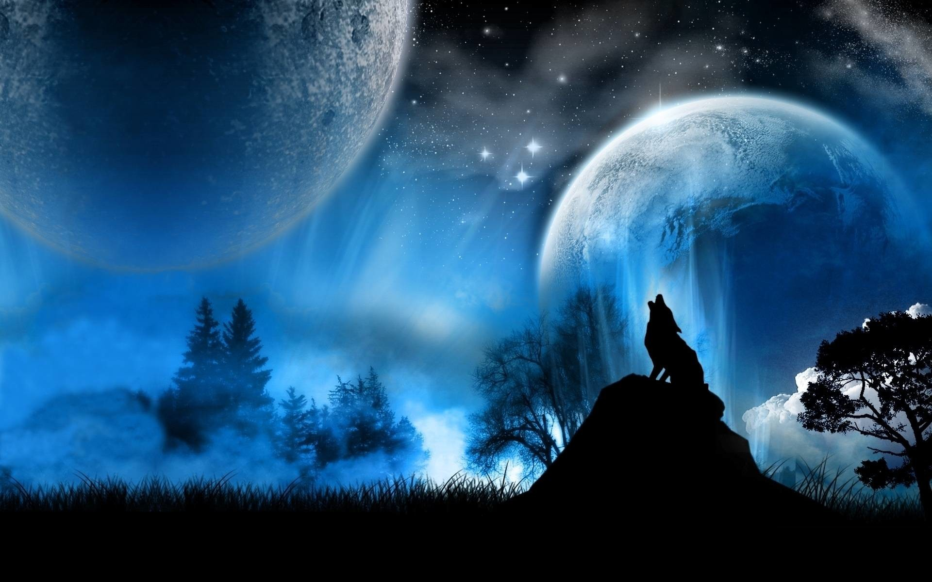 1920x1200 Wolf wallpaper - Wolves<3 Wallpaper