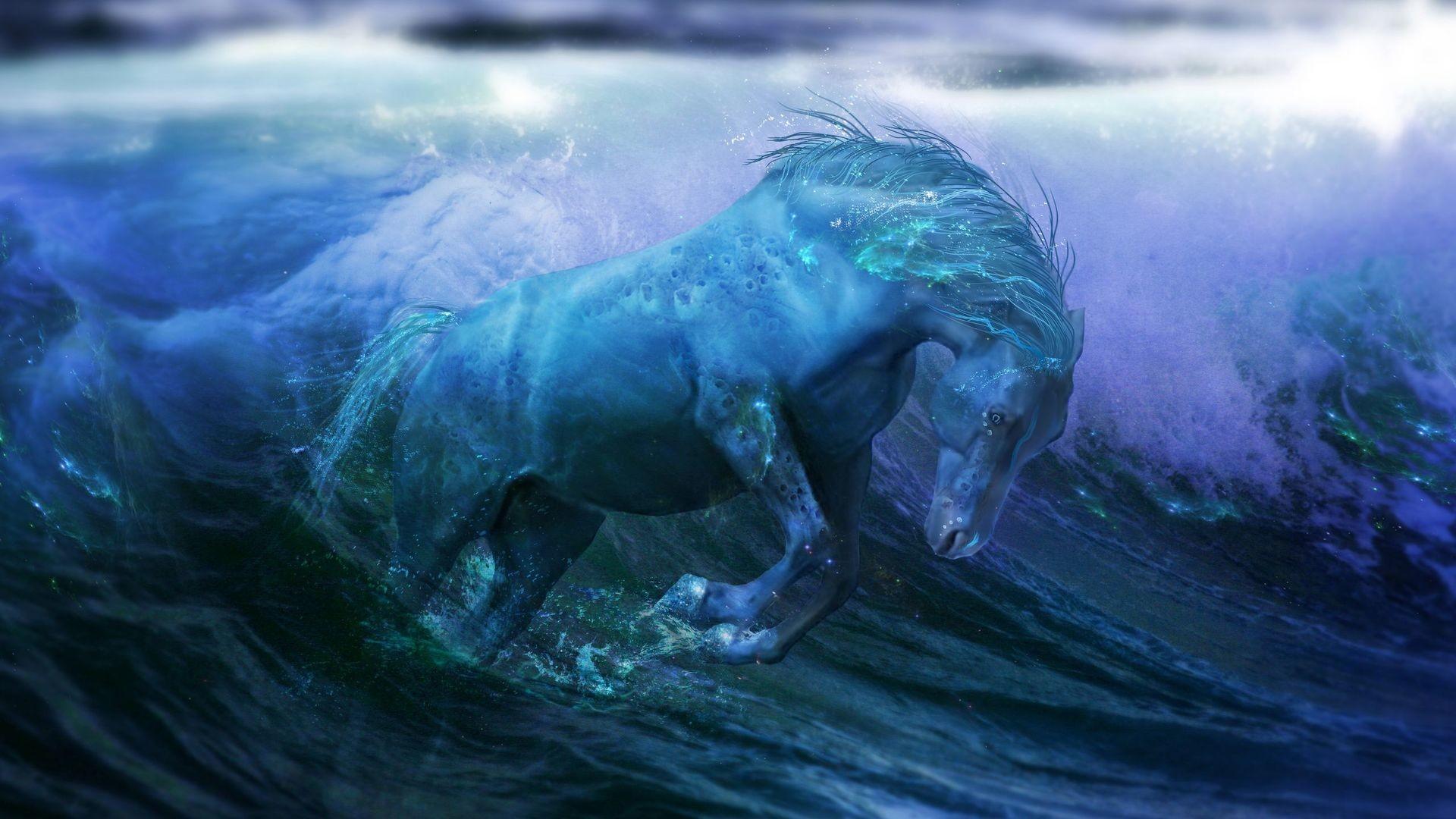 Sea Horse Wallpaper (48+ images)