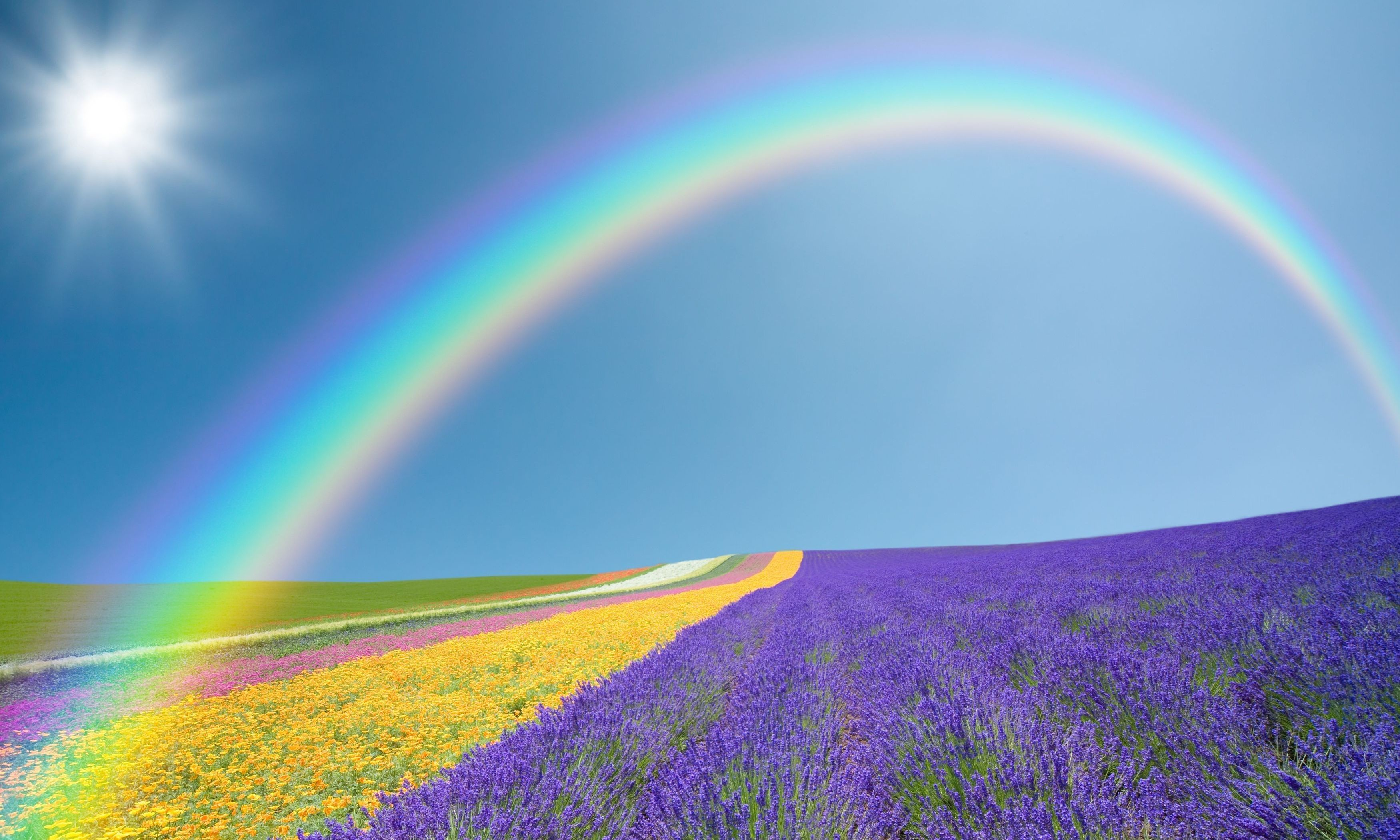 3500x2100 Rainbow Wallpaper Rainbow Wallpaper Rainbow Wallpaper Rainbow Wallpaper  Rainbow Wallpaper ...