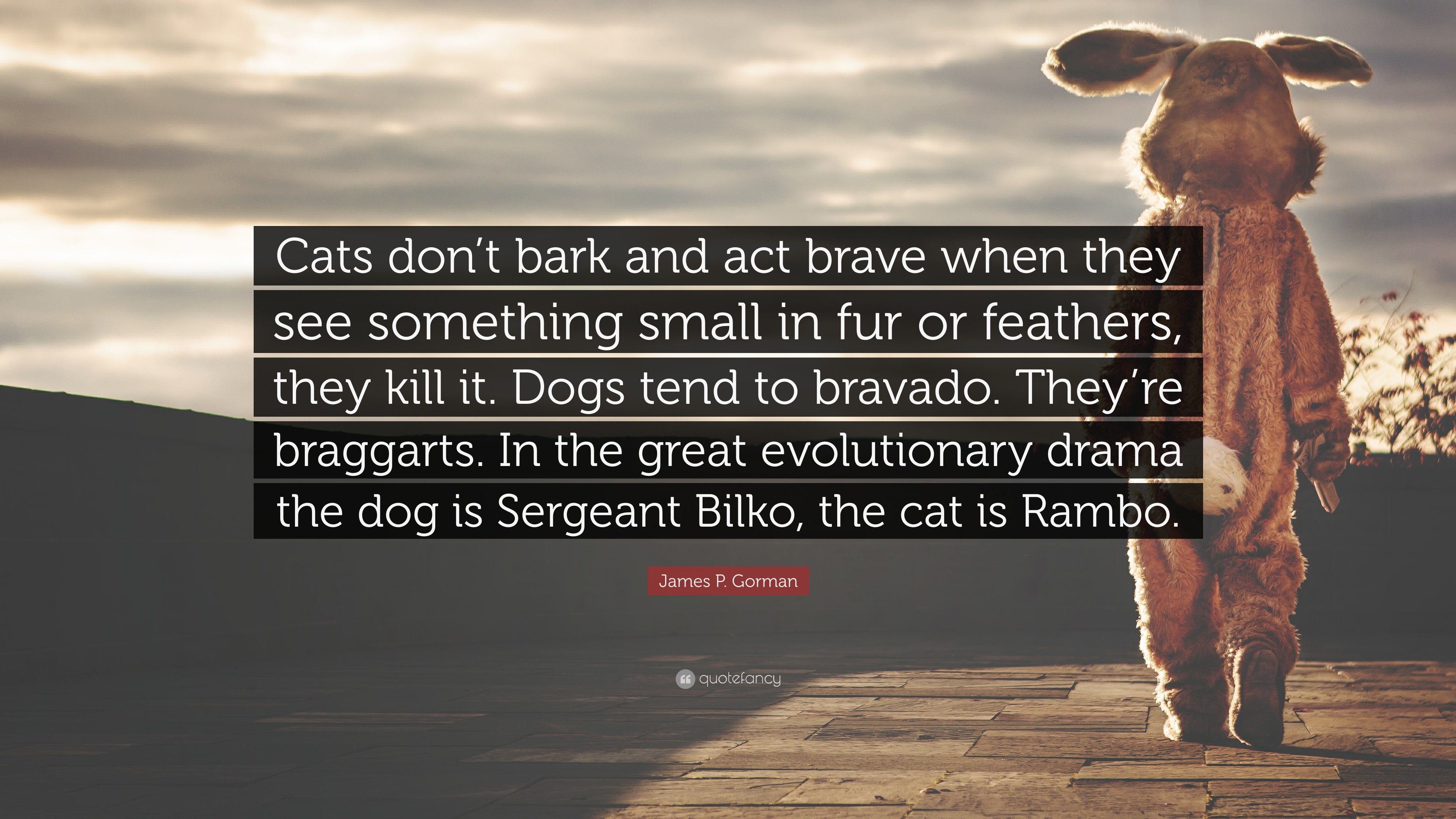 "3840x2160 James P. Gorman Quote: ""Cats don't bark and act brave when"