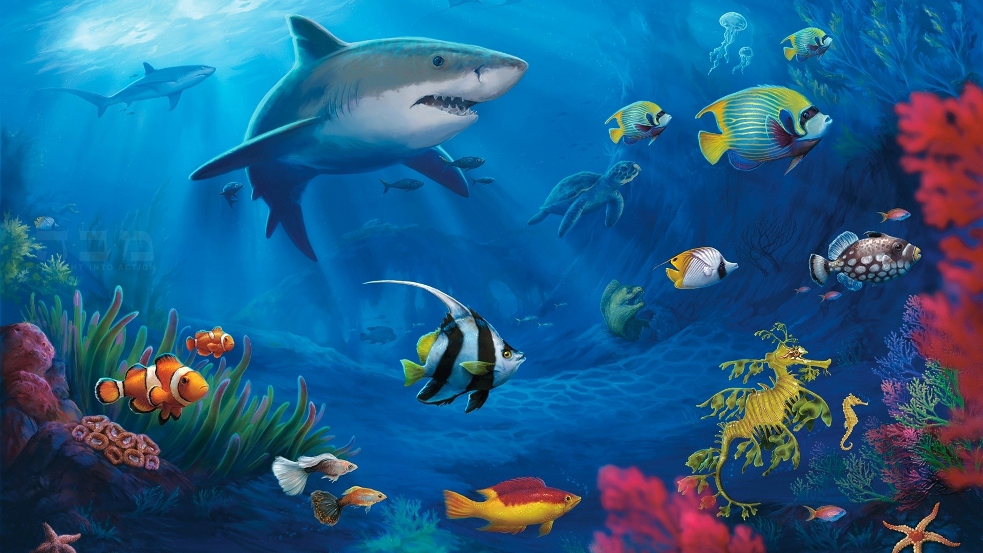 1943x1103 Aquareal 3d Sea Aquarium Screensaver