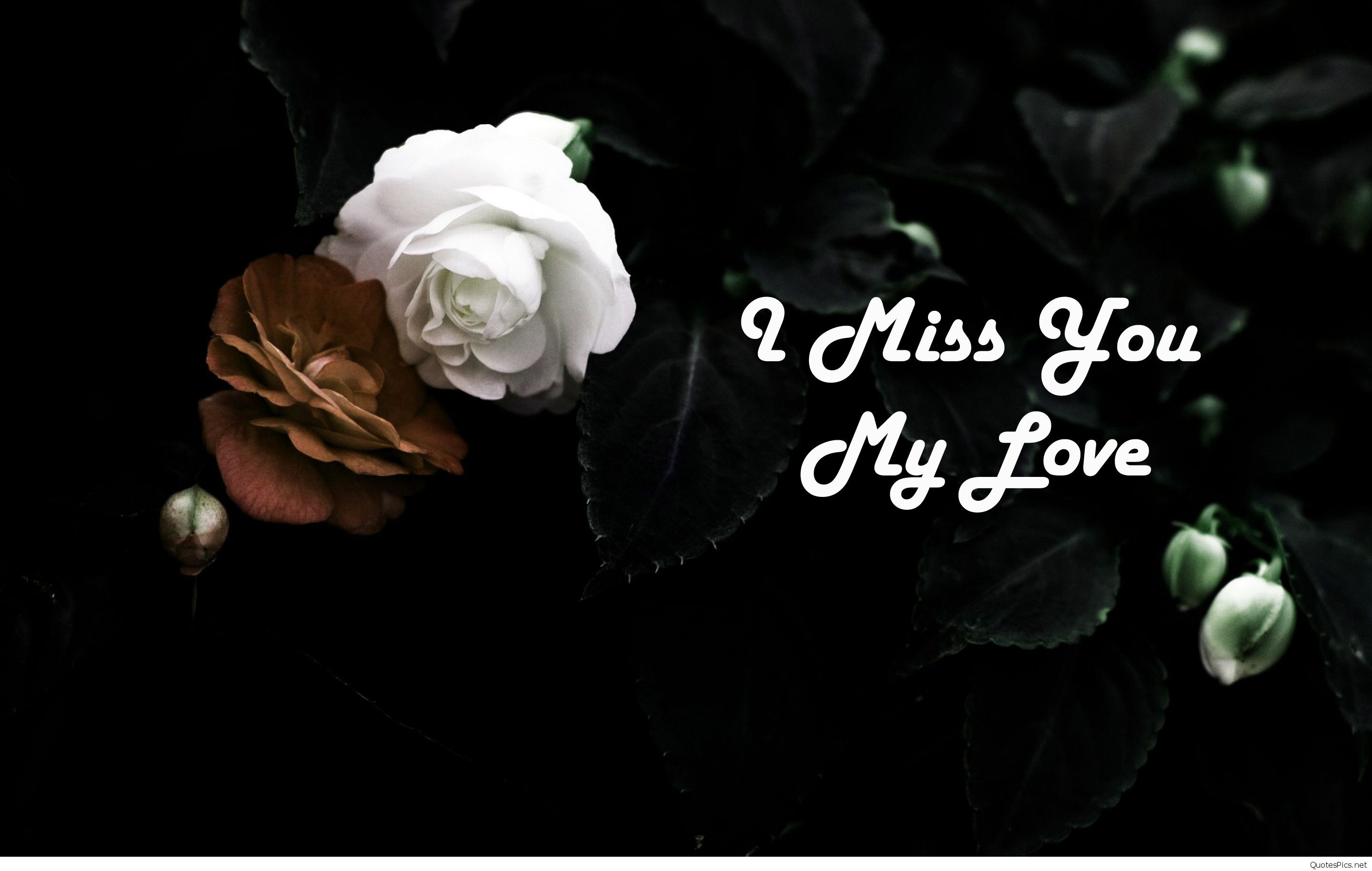 2880x1830 i-miss-you-my-love-wide-hq-wallpaper