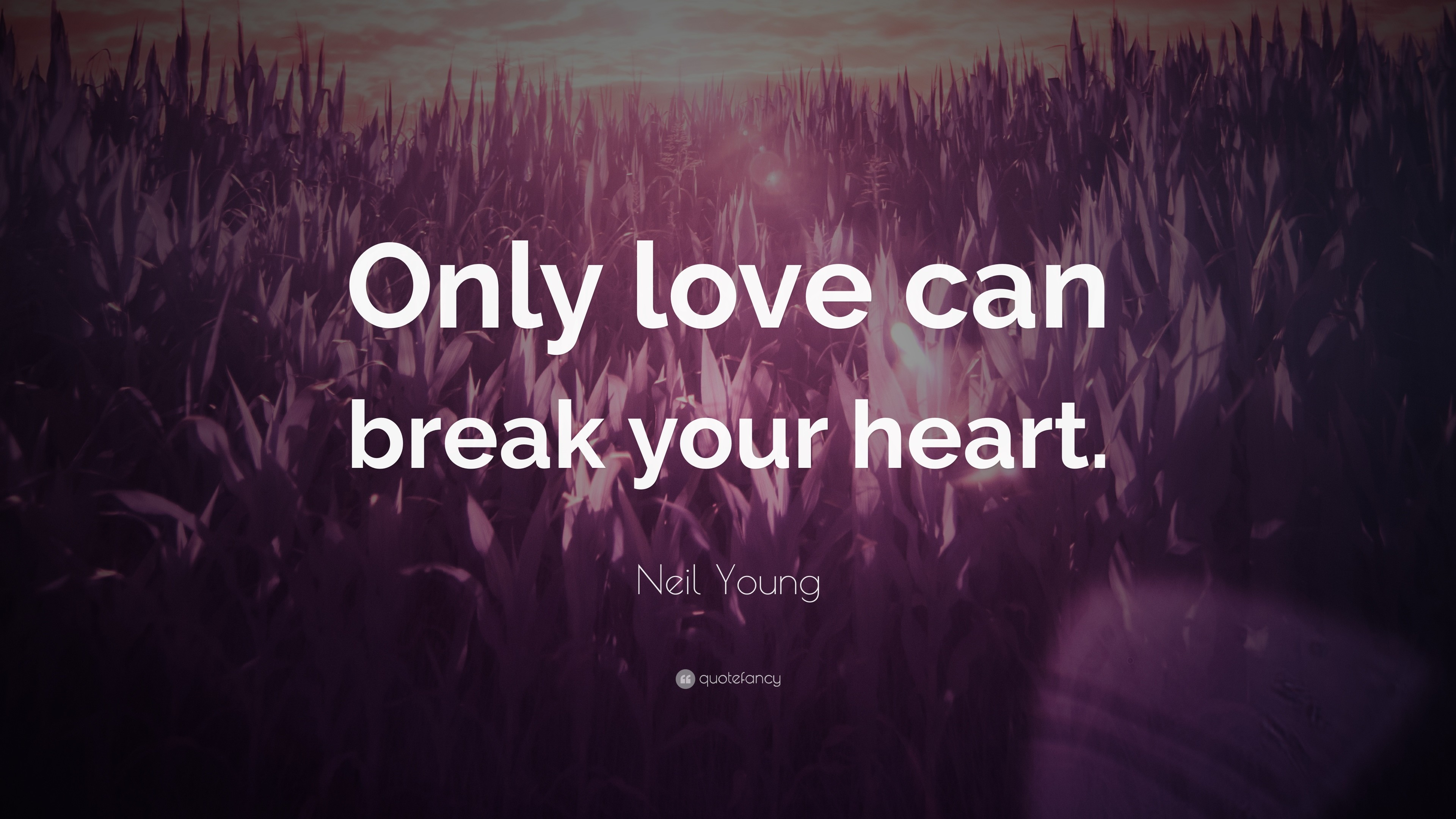 "3840x2160 Neil Young Quote: ""Only love can break your heart."""