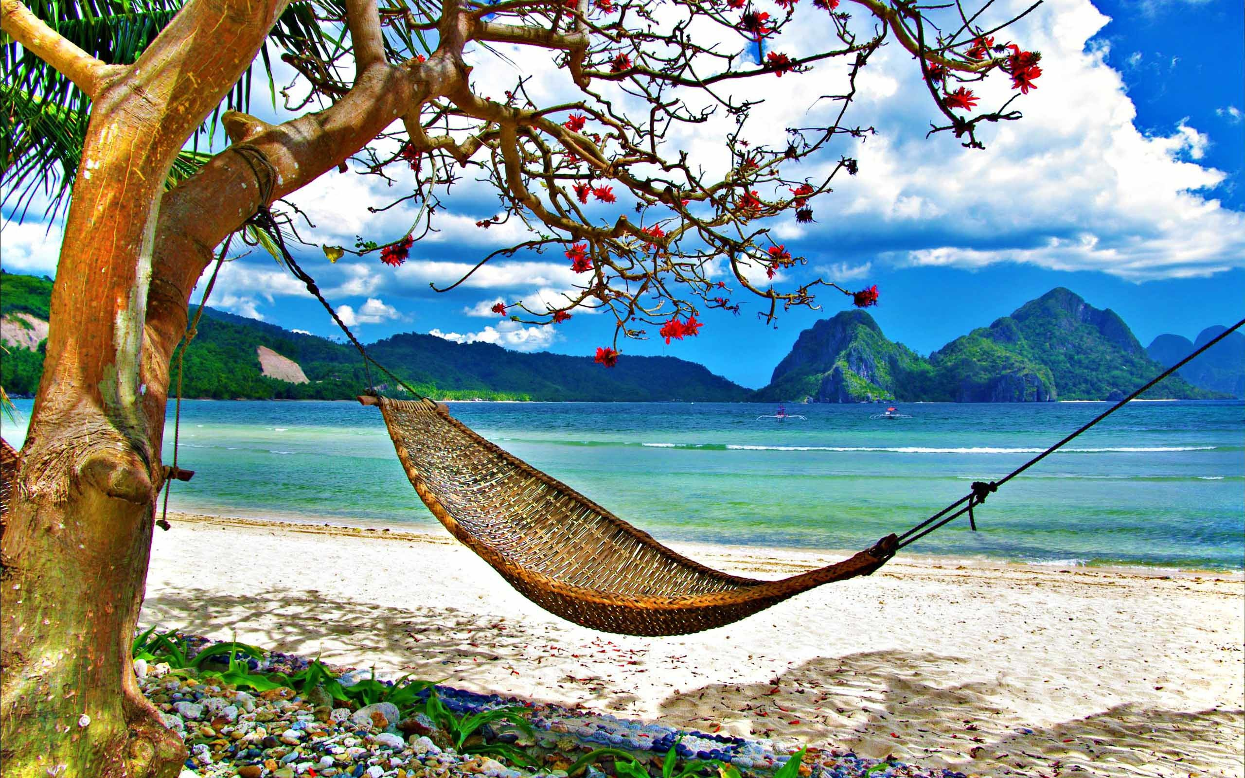 2560x1600 Tropical Beach Wallpaper Hammock Caribbean Hammock Wallpaper With .