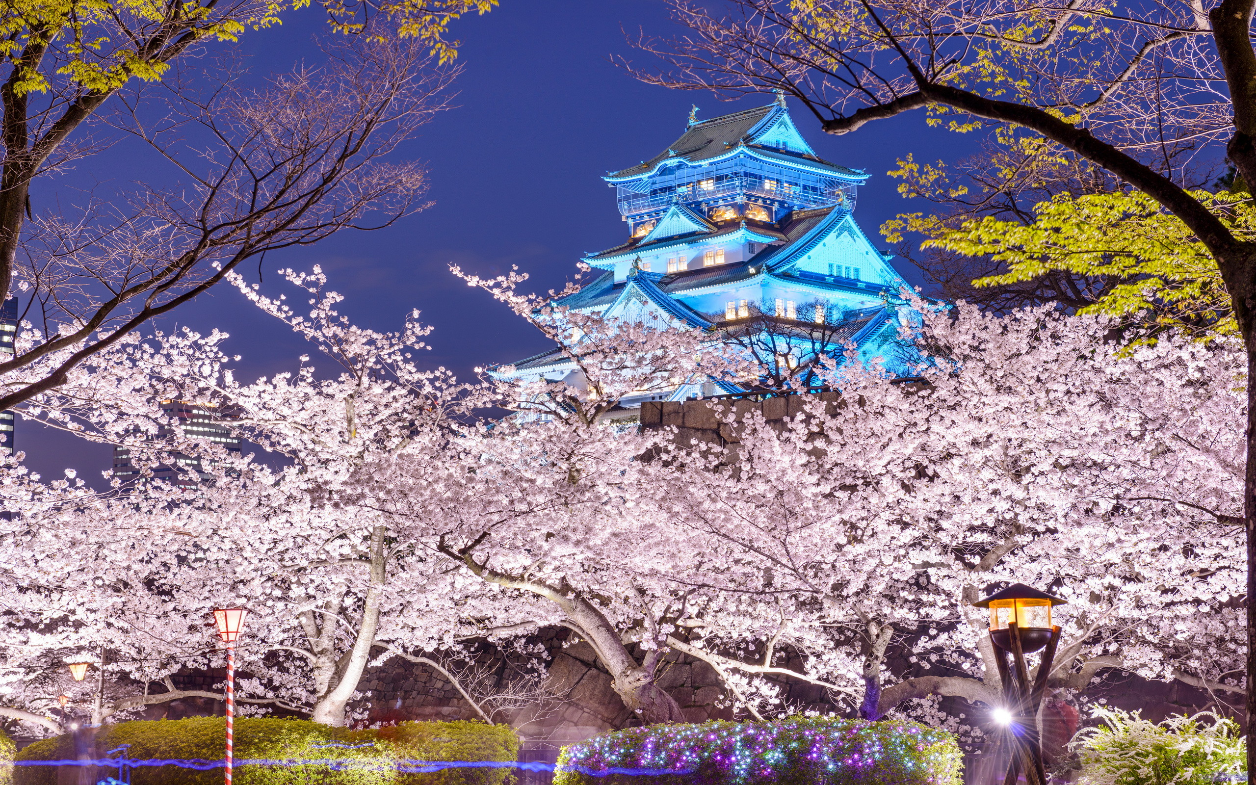 2560x1600 Man Made - Osaka Castle Spring Japan Osaka Oska Castle Wallpaper
