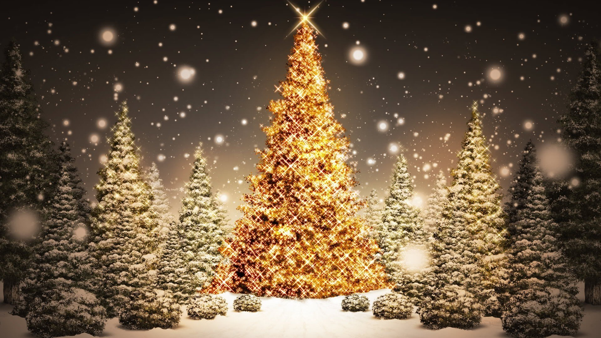 1920x1080 Beautiful Green Merry Christmas Tree HD Wallpaper