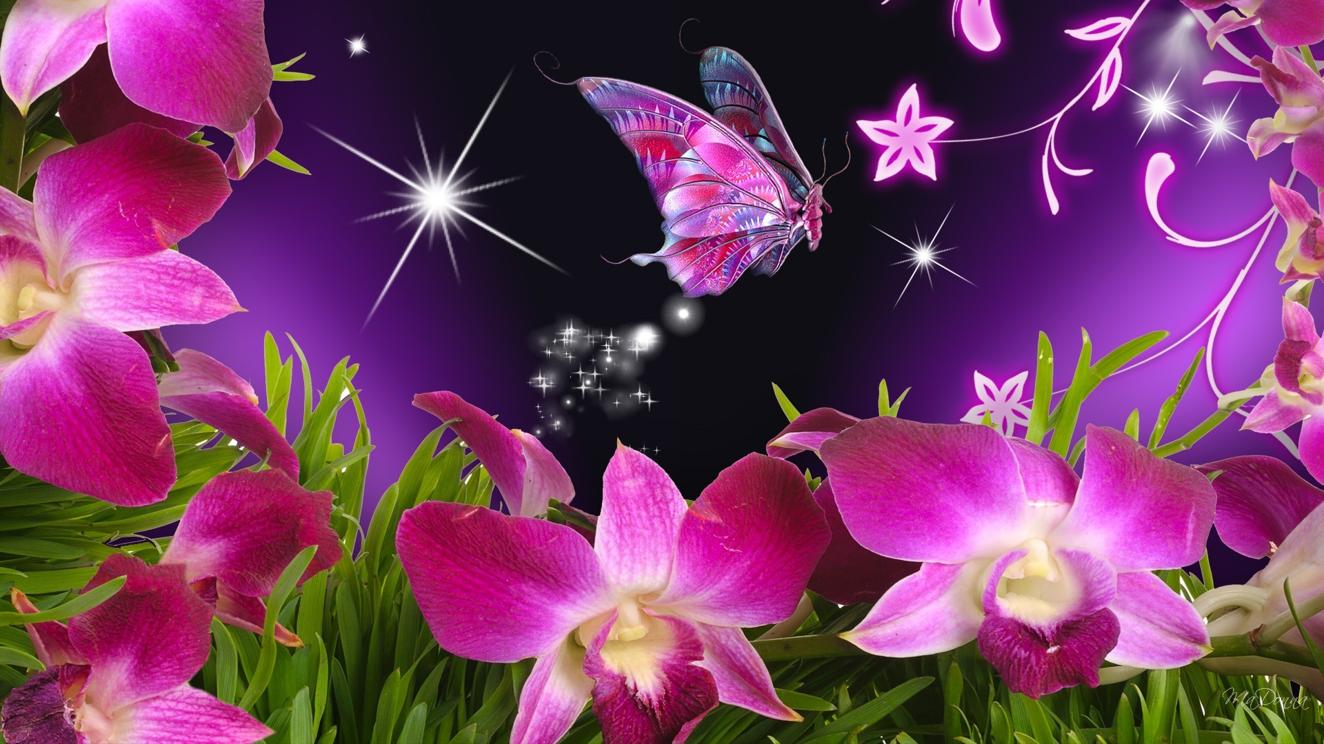 Beautiful butterflies and flowers wallpapers 56 images 1920x1080 flowers for beautiful flowers and butterflies wallpapers wallpapersthemesect mightylinksfo