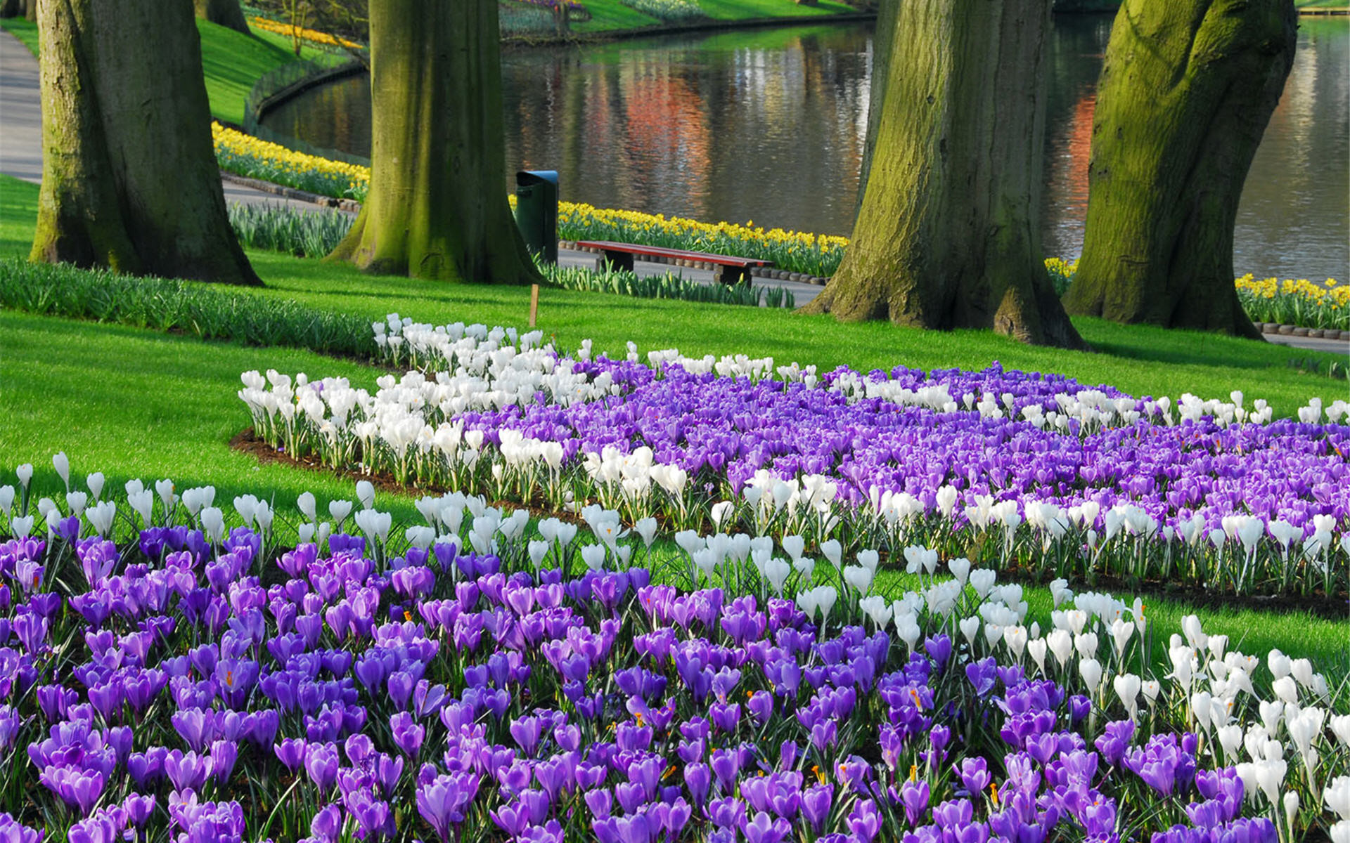 1920x1200 Flowers · Keukenhof Largest Garden Wallpaper HD