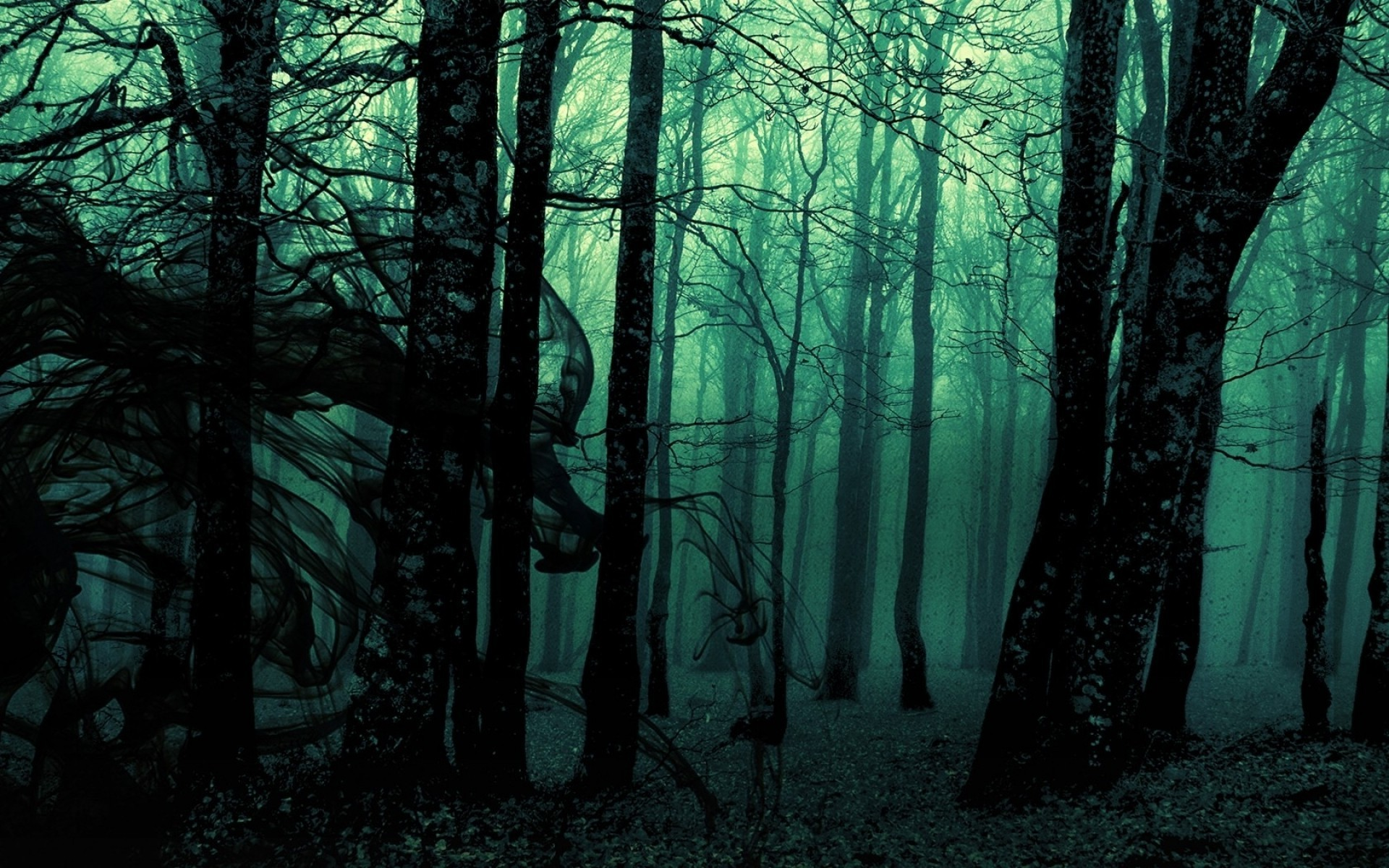 1920x1200 forest, Landscape, Dark, Nature, Trees, Photo Manipulation, Gloomy Wallpapers  HD / Desktop and Mobile Backgrounds