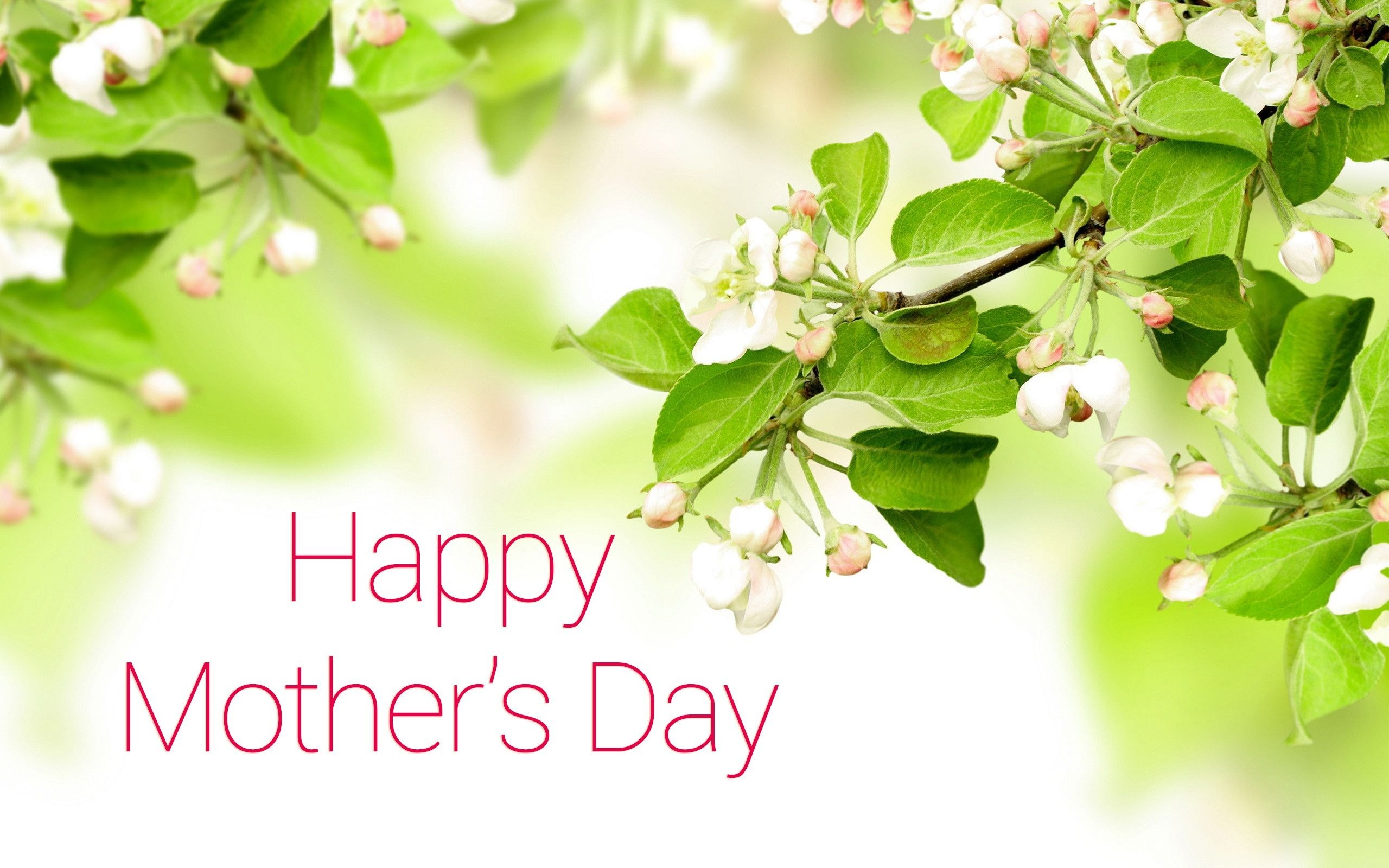 Mothers Day Wallpaper Images (54+ images)