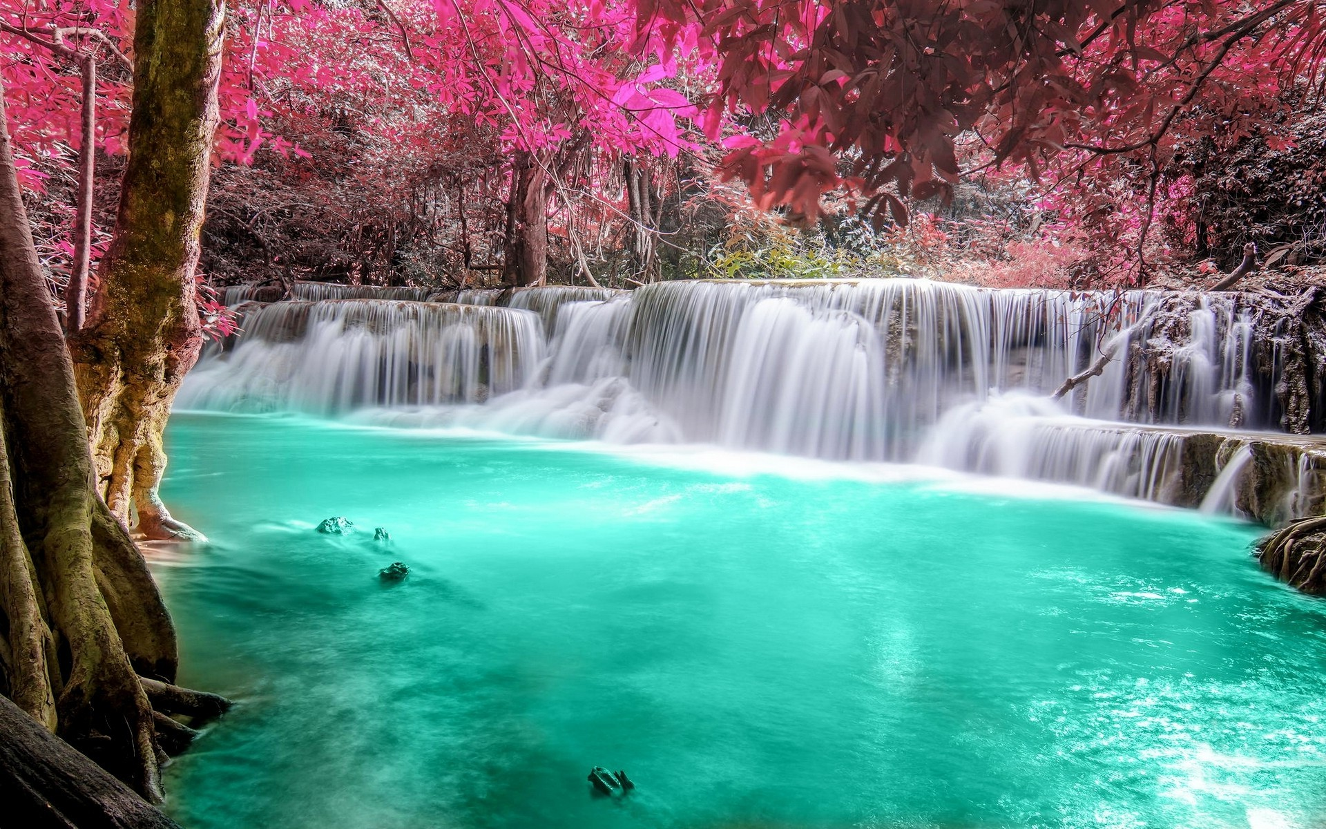 1920x1200 waterfall, Forest, Colorful, Nature, Thailand, Trees, Landscape, Pink,  Turquoise, White, Tropical, River, Pond, Leaves Wallpapers HD / Desktop and  Mobile ...