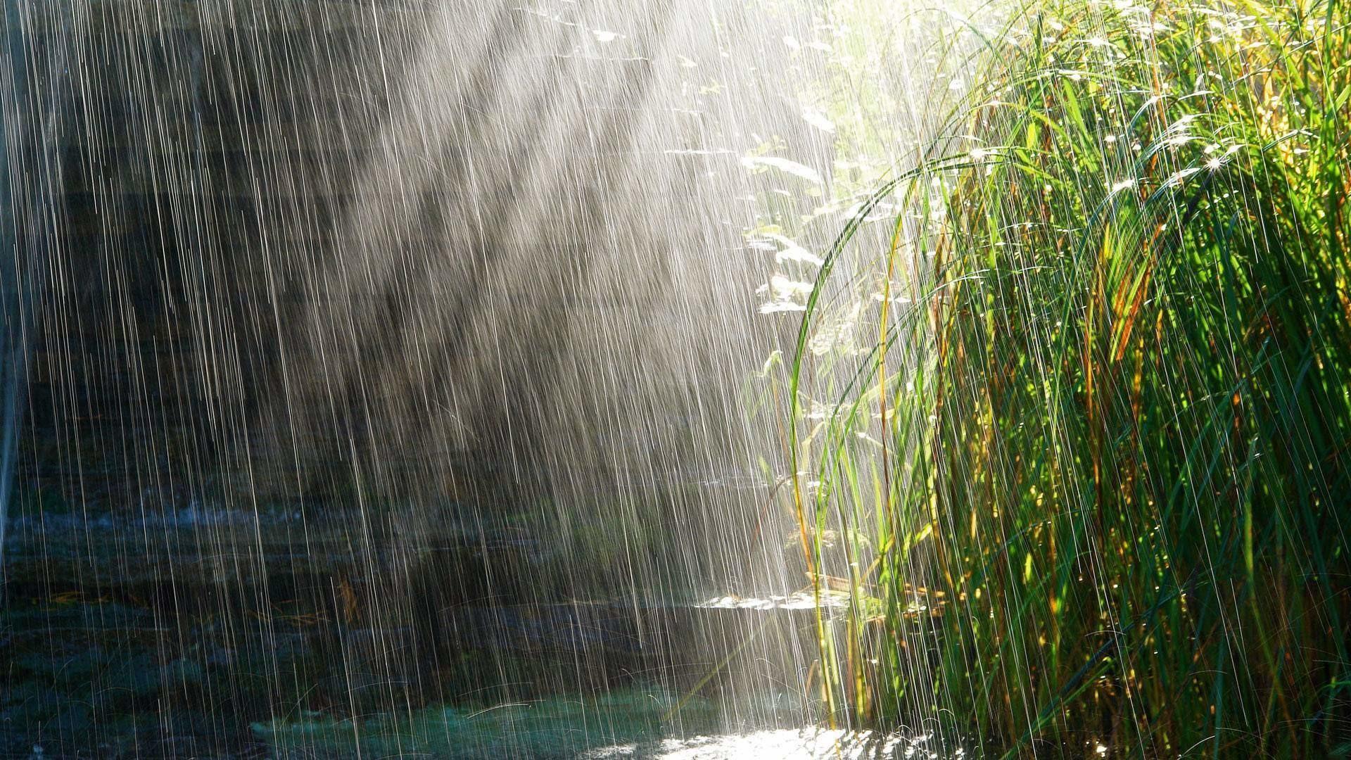 1920x1080 rainy day backgrounds