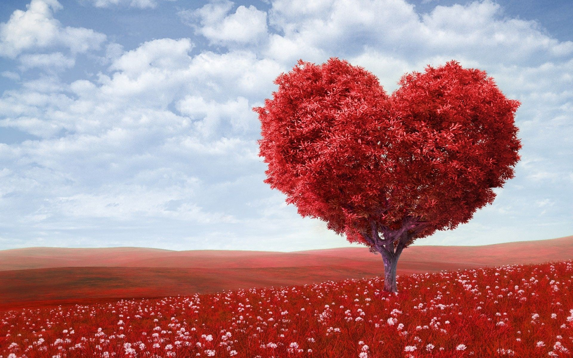 Beautiful Wallpaper About Love : Beautiful Love Backgrounds (58+ images)