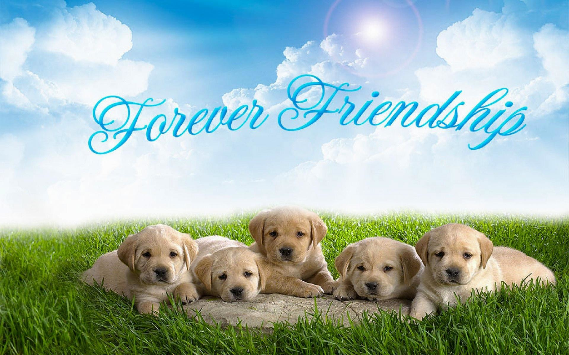 1920x1200 wallpaper.wiki-Free-Download-Best-Friends-Forever-Picture-