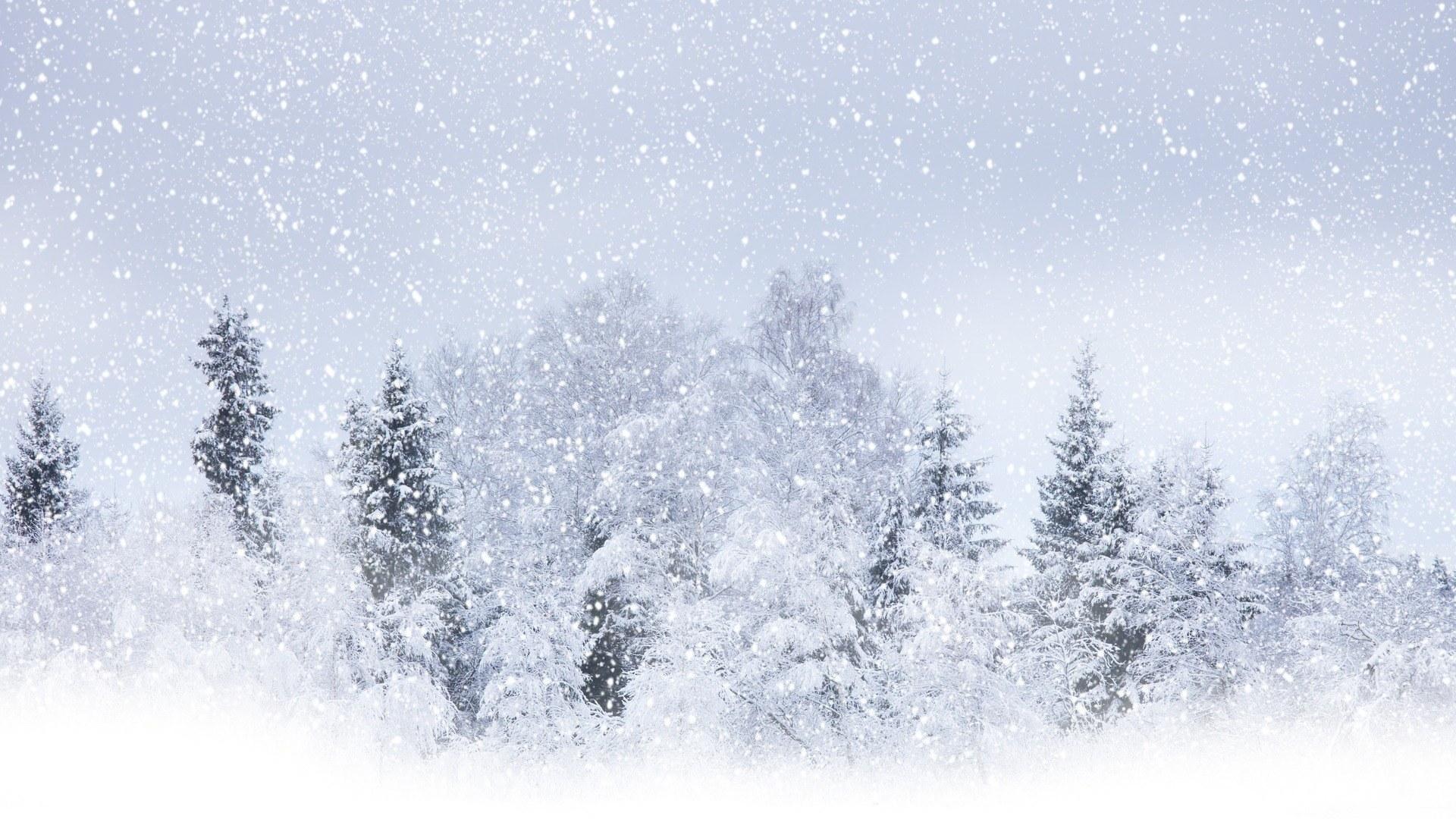 Winter Wonderland Background 44 Images