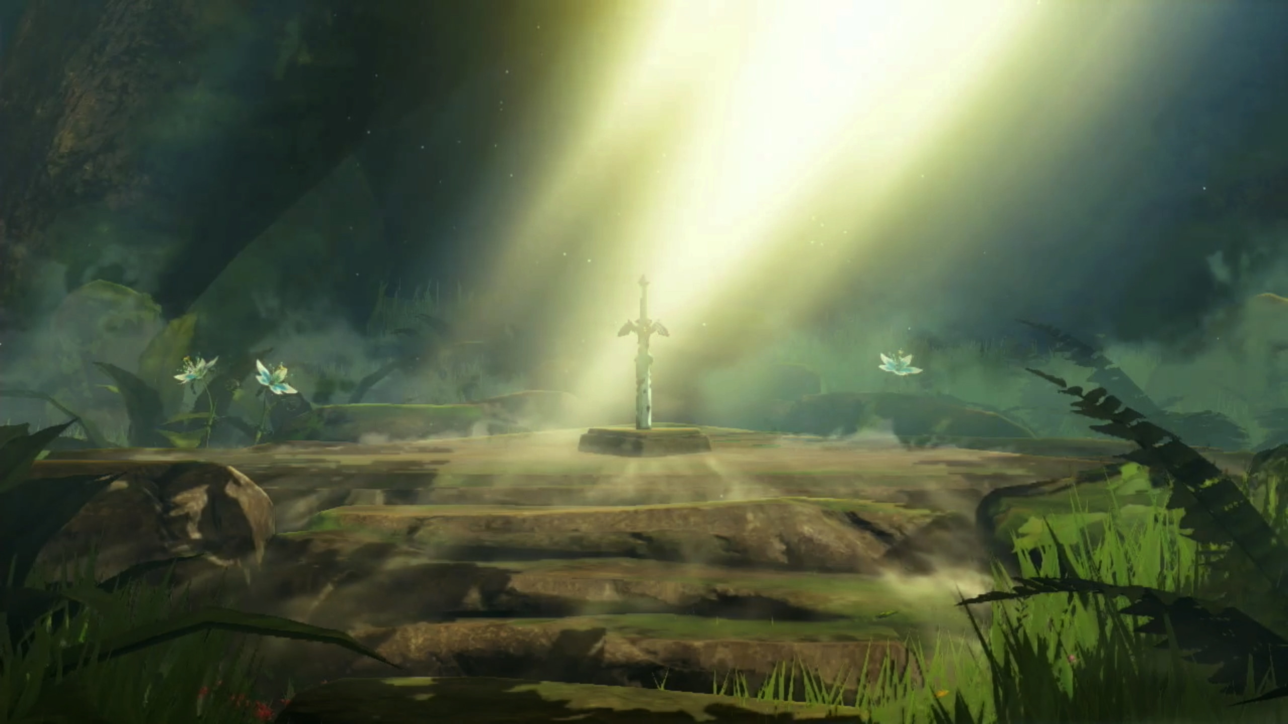 2560x1440 Res: 1920x1080, Hylian shield and Master sword