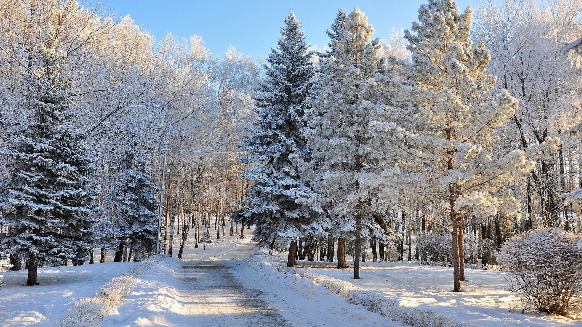 HD Winter Wallpapers 1080p (68+ Images