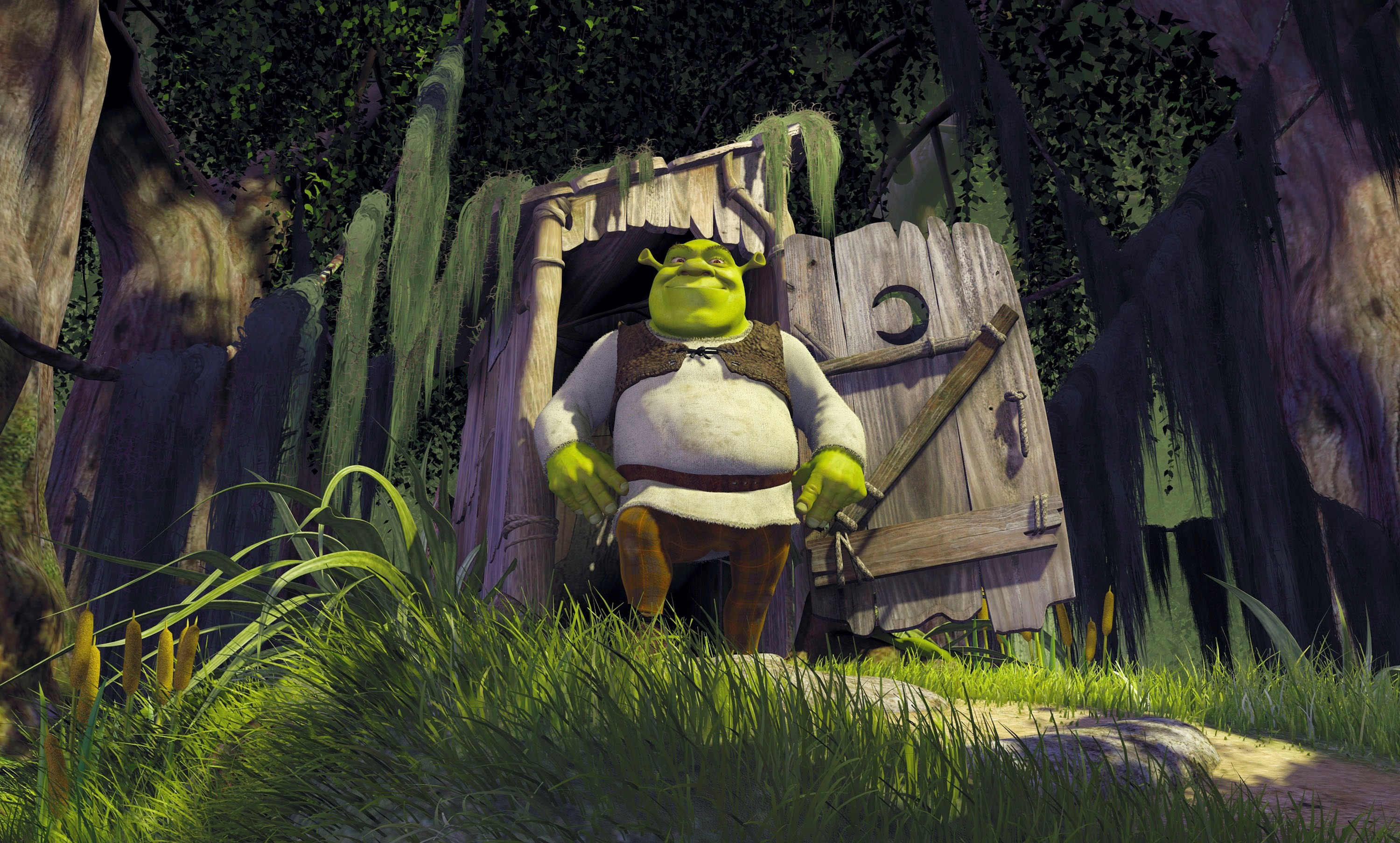 3000x1808 Shrek Extra Large HD Wallpapers Backgrounds Wallpaper | Wallpapers 4k |  Pinterest | Cartoon background, Shrek and Wallpaper