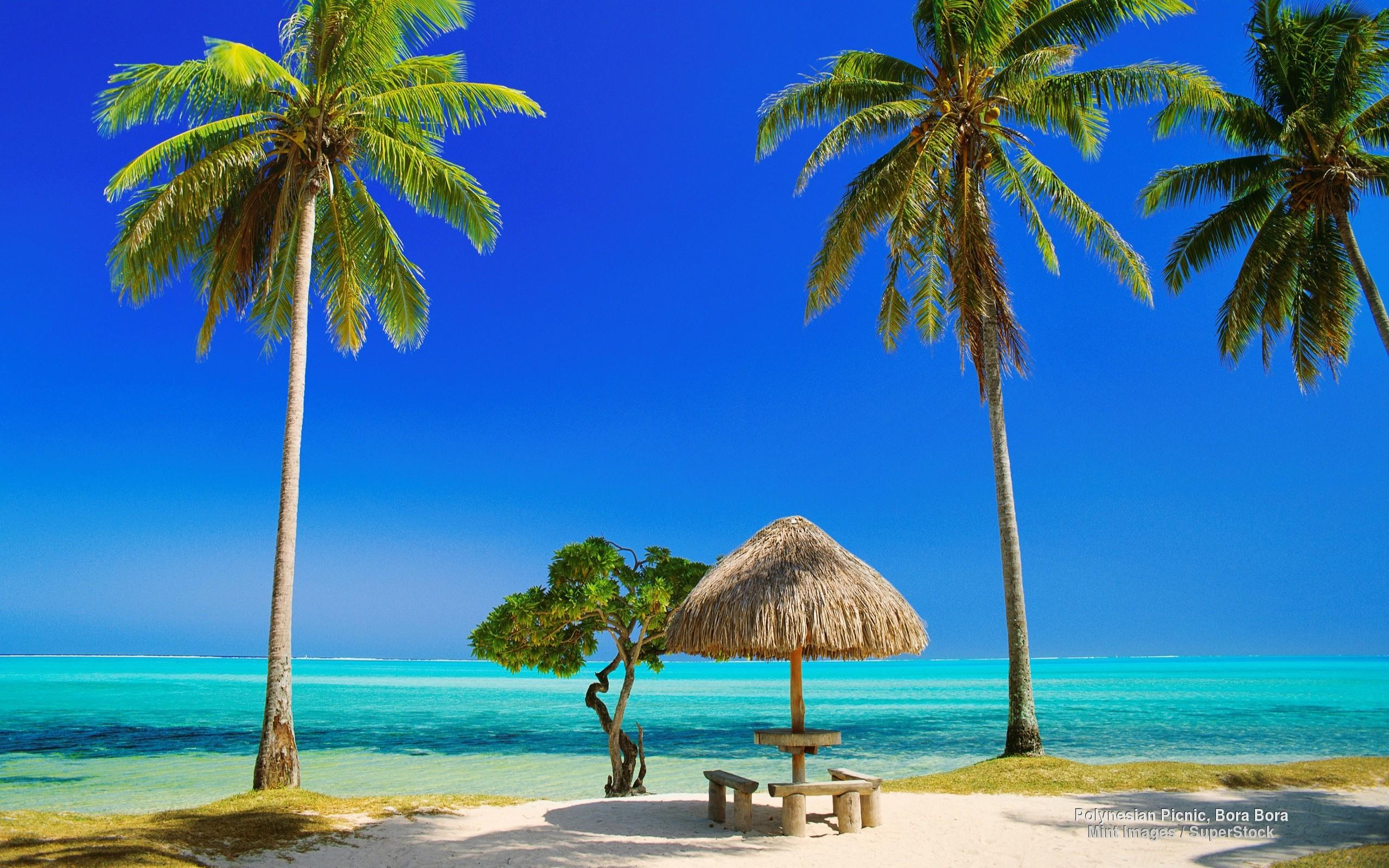 Tropical Beach HD Wallpaper (68+ Images