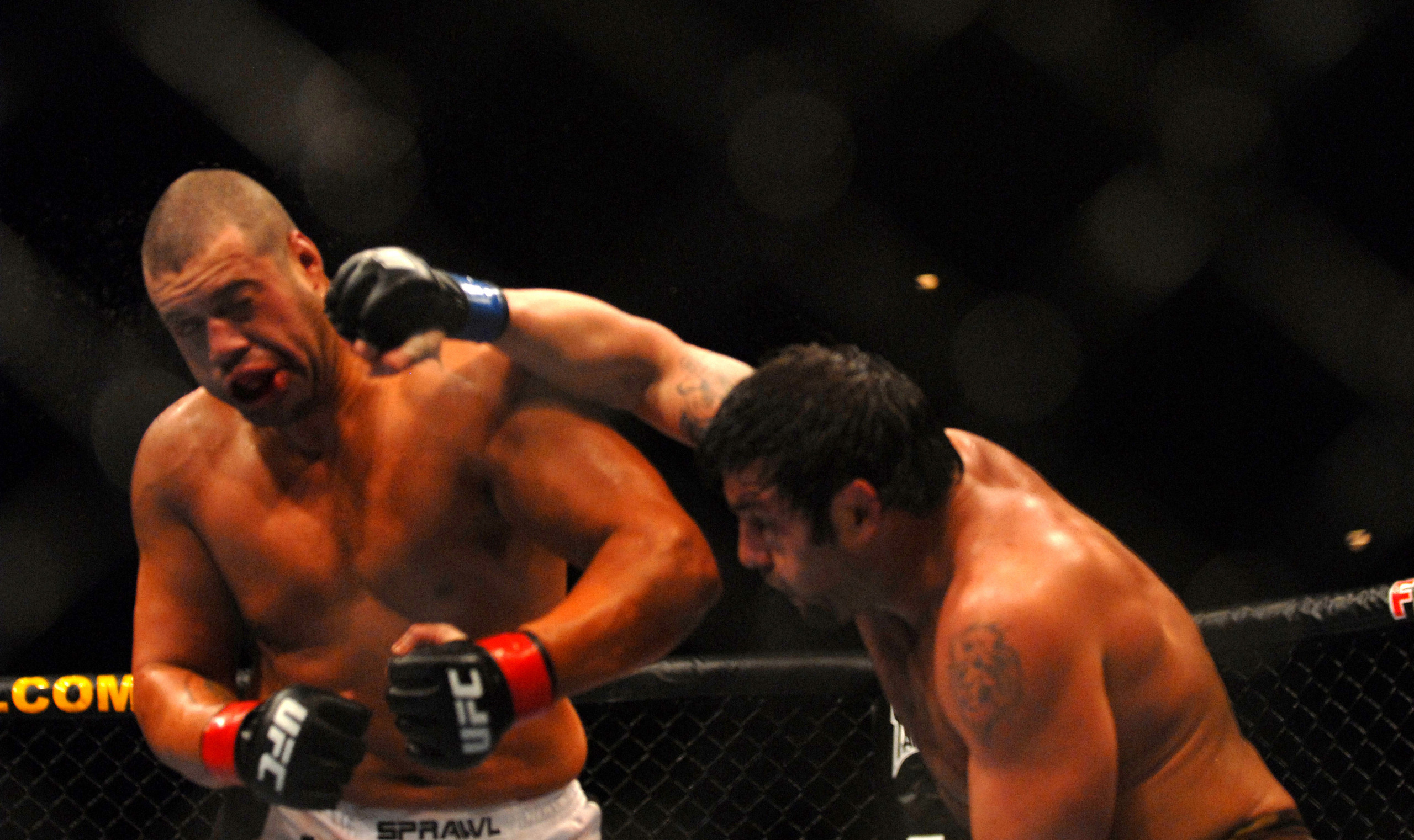 Ufc fighters wallpaper 78 images - Free ufc wallpapers ...