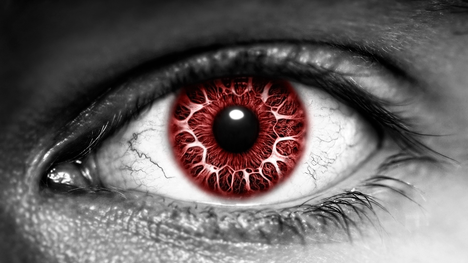 1920x1080 Blood Red Eye wallpaper from Eyes wallpapers