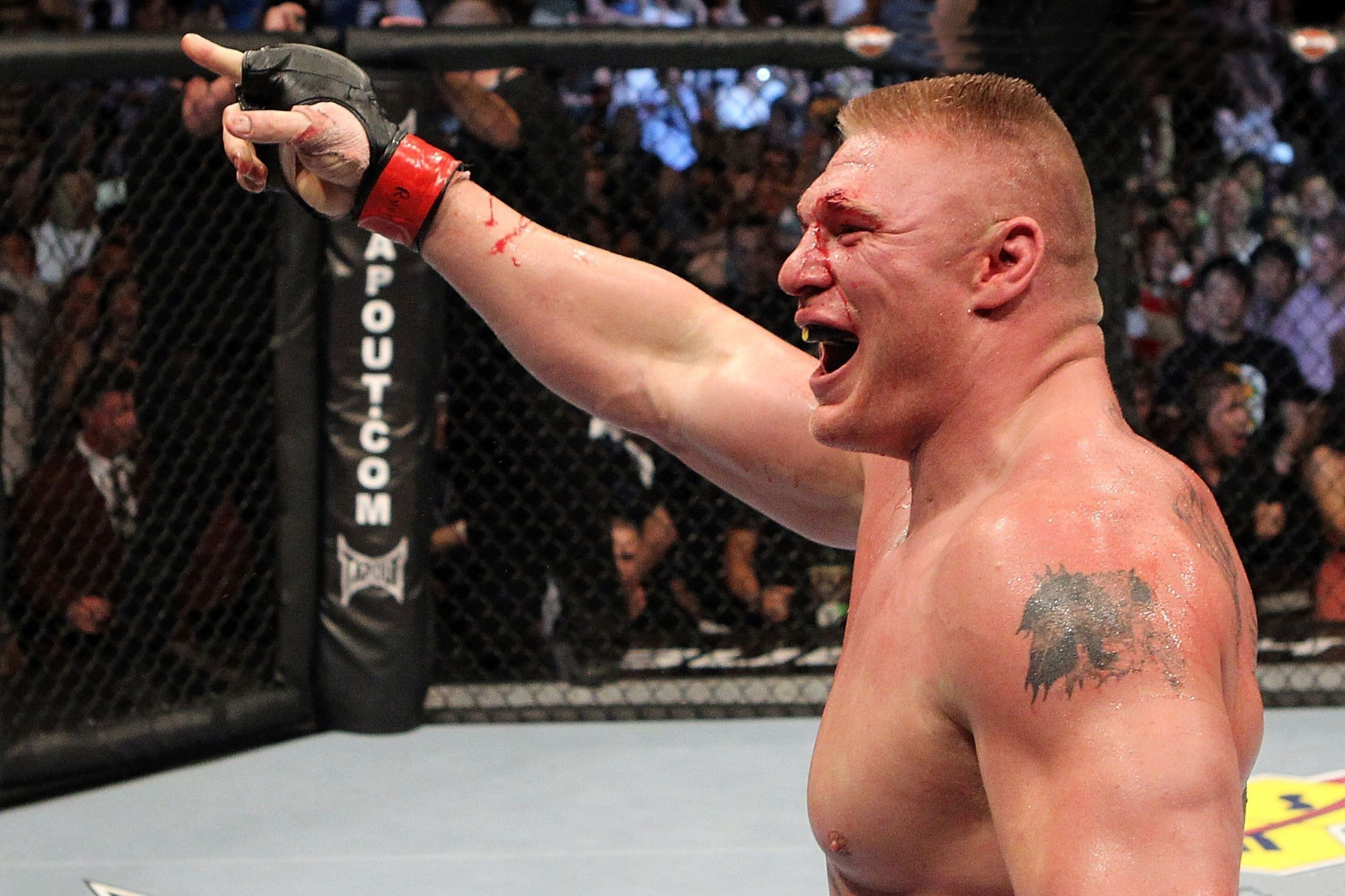 2288x1525 ... brock lesnar wallpapers backgrounds ...