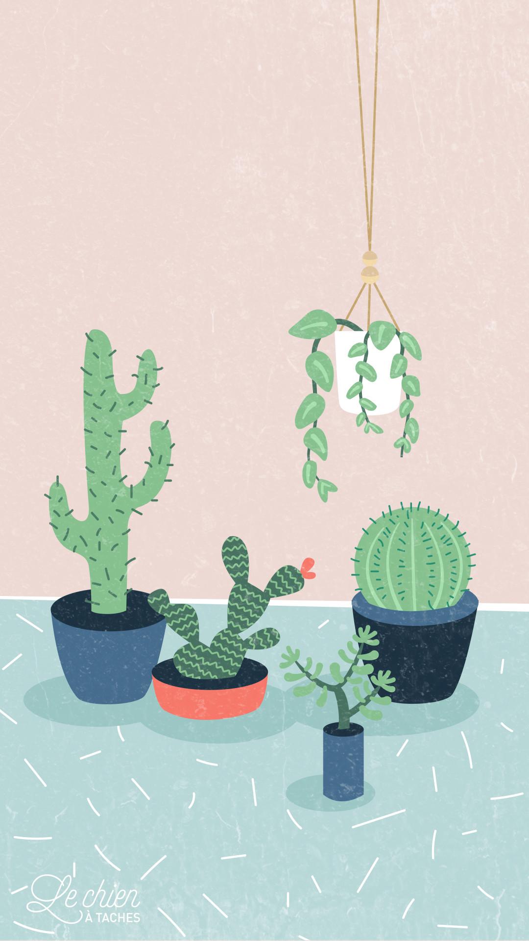 Iphone 7 Wallpaper Adorable Cactus Wallpaper