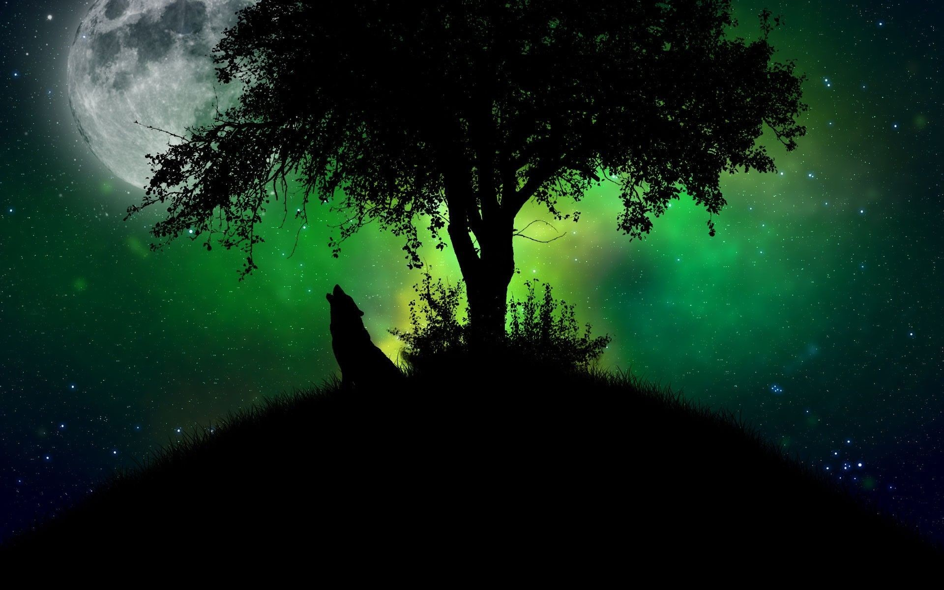 1920x1200 Howling wolf HD Wallpaper 1920x1080 Howling wolf HD Wallpaper