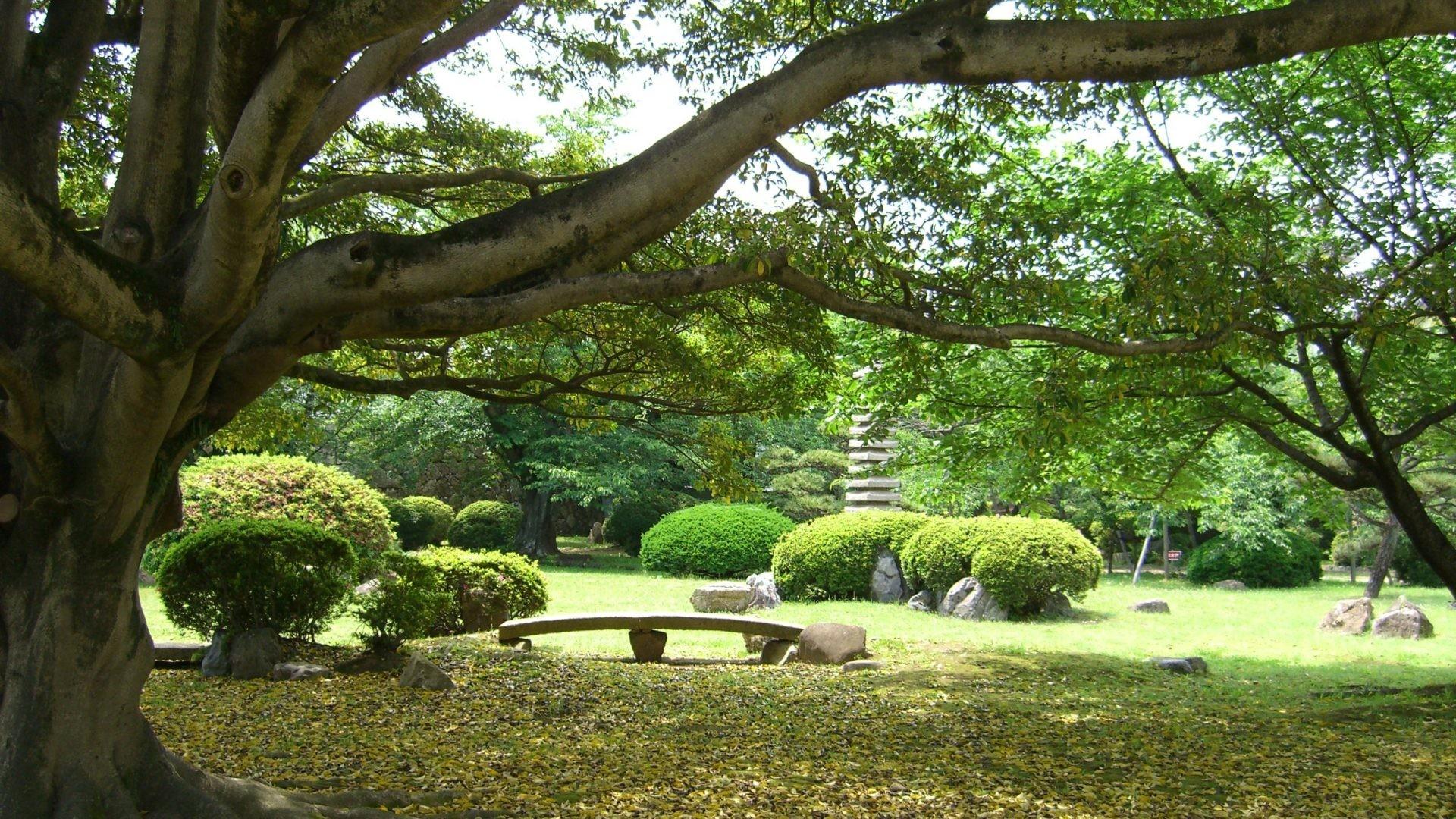 Zen wallpaper 1920x1080 68 images for Zen garden trees