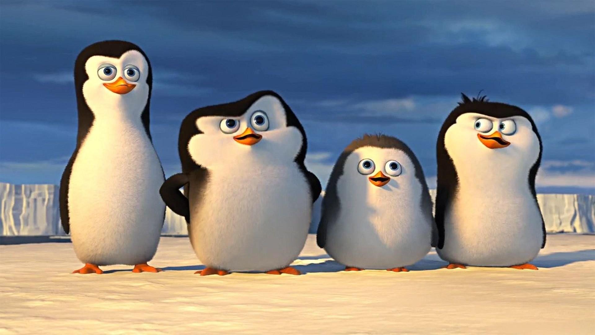 die pinguine aus madagascar online schauen bei maxdome in
