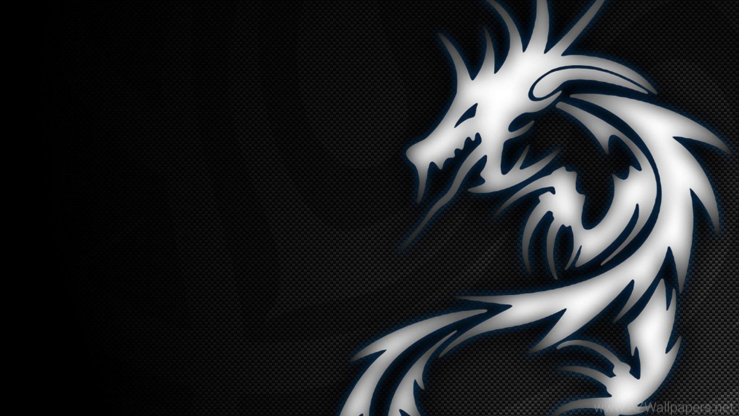 2560x1440 Dragon MSI Logo Wallpaper, HD Desktop Wallpapers