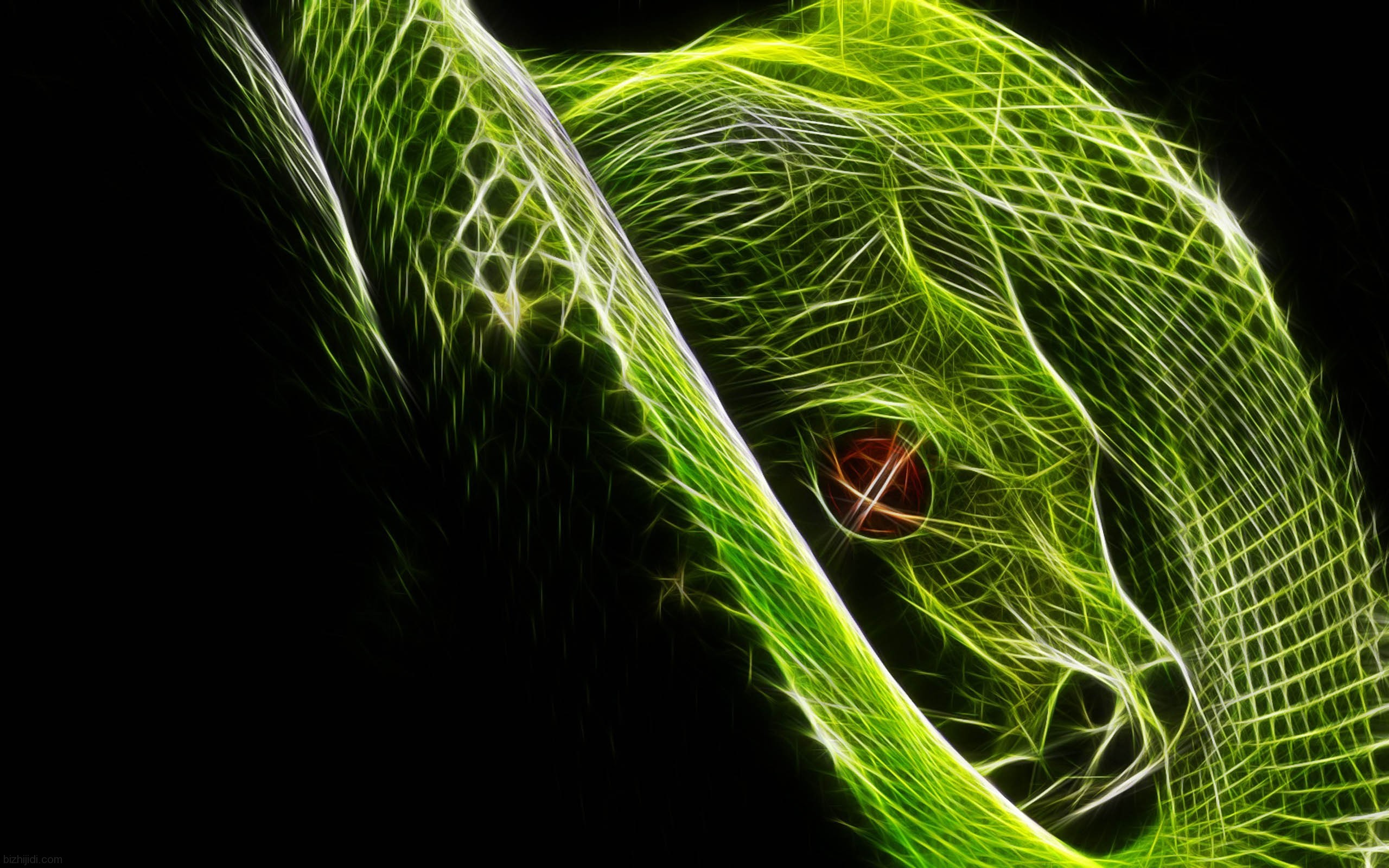 2560x1600 snakes images Snake HD wallpaper and background photos