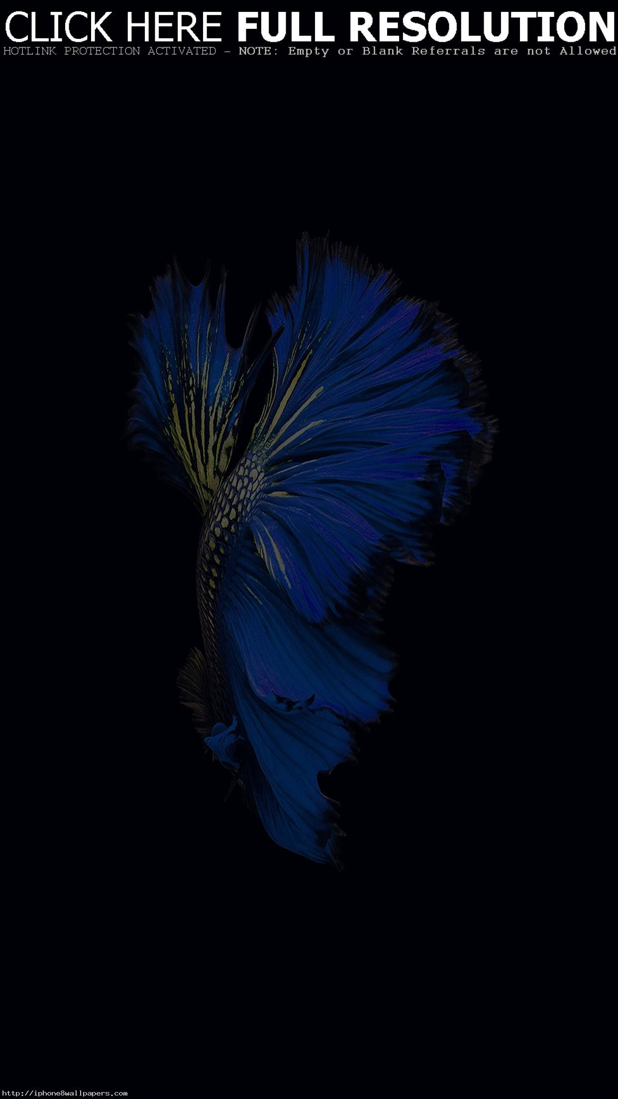 1242x2208 Apple IOS9 Fish Live Background Dark Blue Android Wallpaper