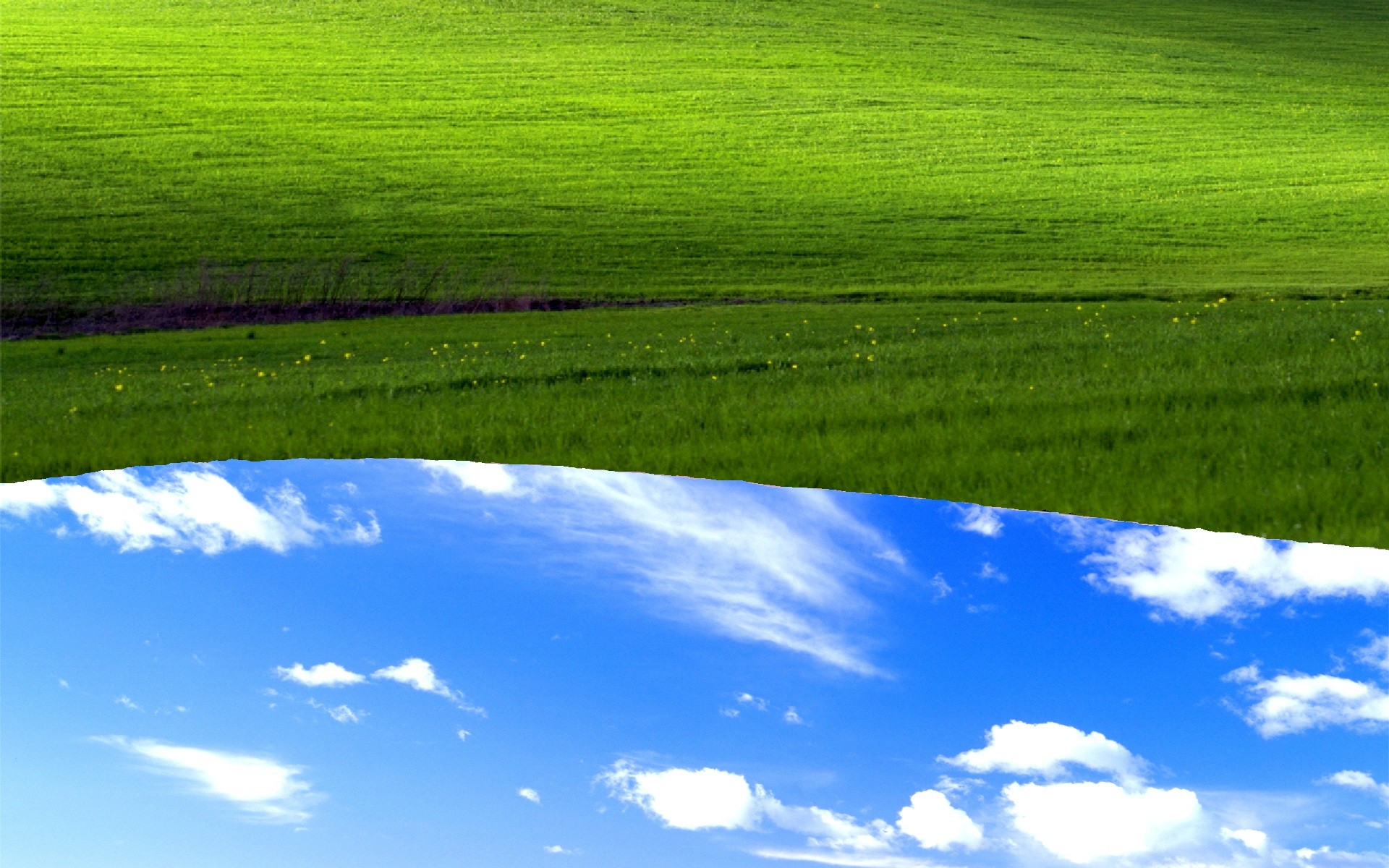 1920x1200 Bliss grassland green sky nature field grass meadow ecosystem daytime  atmosphere atmosphere of earth water resources