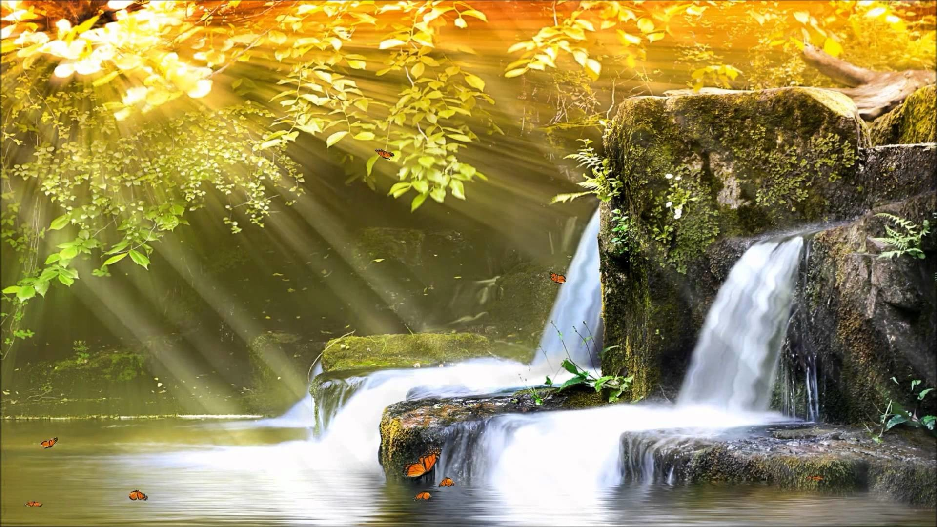 Nature Wall Murals Animated Waterfall Wallpaper With Sound 46 Images