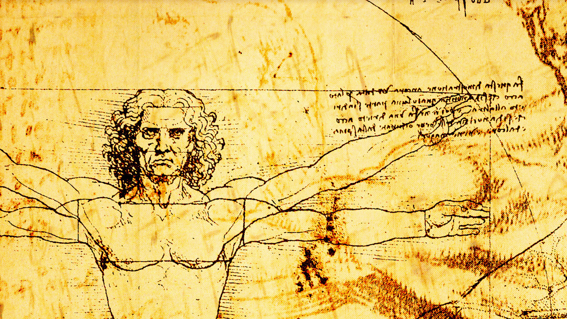 the works of leonardo da vinci essay Leonardo attended school and lived in vinci until 1466 at the age of 14 leonardo moved to florence where he began an apprenticeship in the workshop it was reported about this painting that the work of leonardo far surpassed that of his master this was the reason that verrochio would never touch.