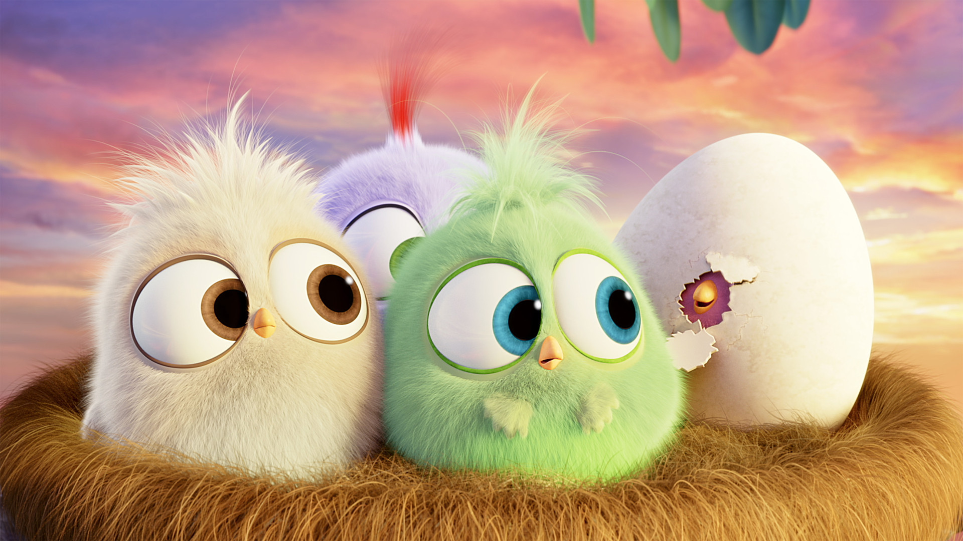 1920x1080 Hatchlings Angry Birds Hd Wallpaper [] Need #iPhone #6S #Plus # Wallpaper/ #Background for #IPhone6SPlus? Follow iPhone 6S Plus 3Wallpapers…