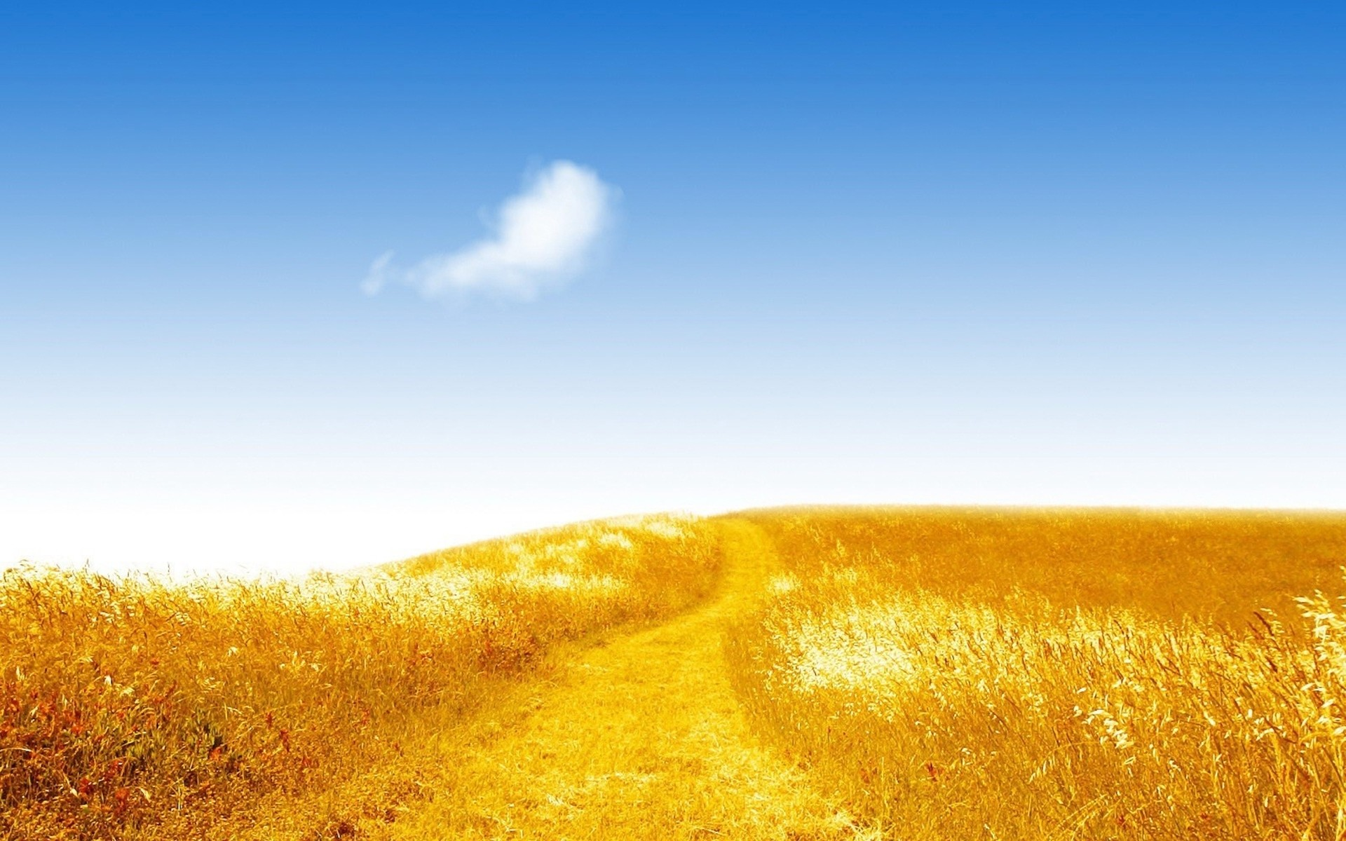 1920x1200 Bild: Golden Hill Way Blue Sky wallpapers and stock photos. Â«