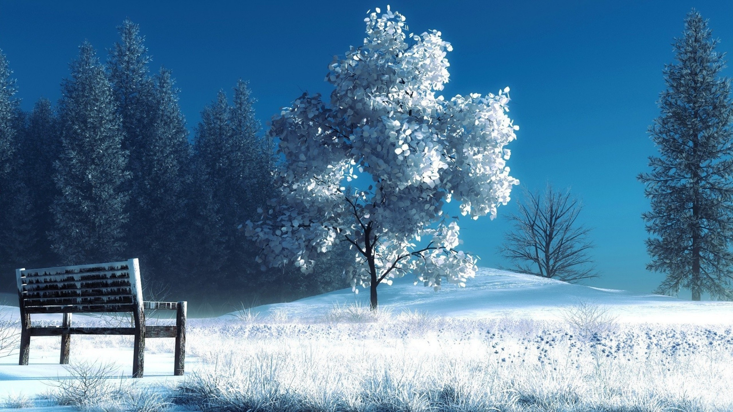 2560x1440 Preview wallpaper winter, landscape, nature, snow, bench, trees