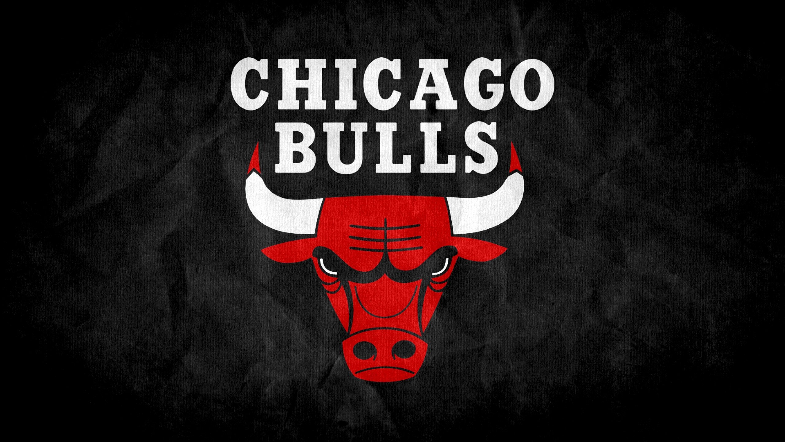 2560x1440  Wallpaper chicago bulls, 2015, logo