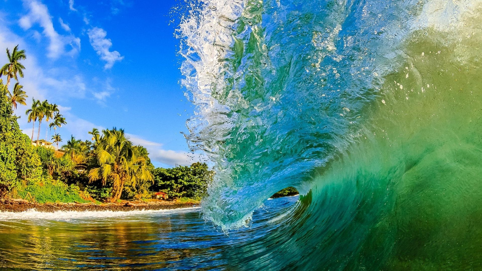 Beach Waves Wallpapers For Desktop Beach Waves: Tropical Waves Screensavers And Wallpaper (55+ Images