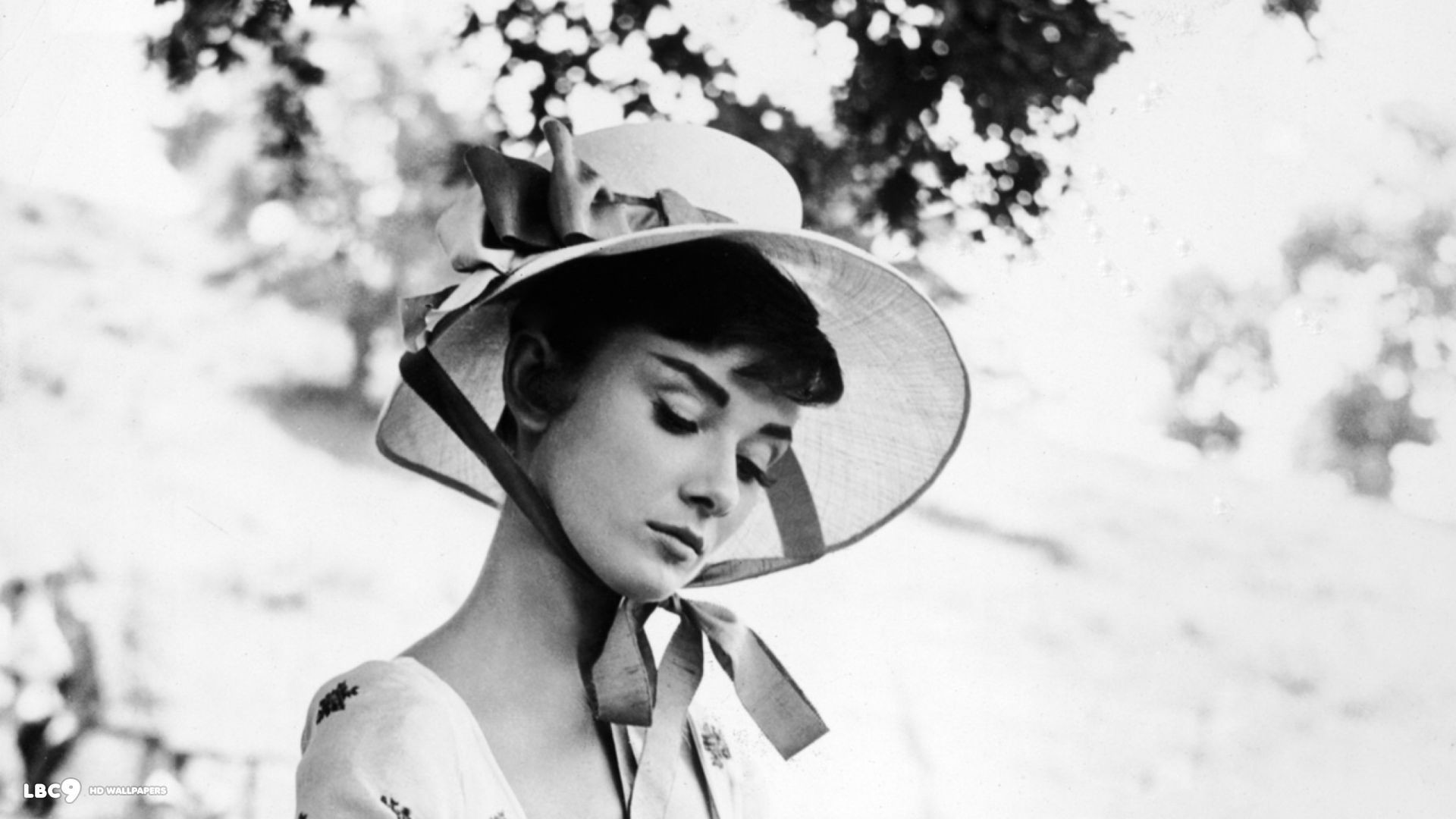 Audrey Hepburn Background 64 Images
