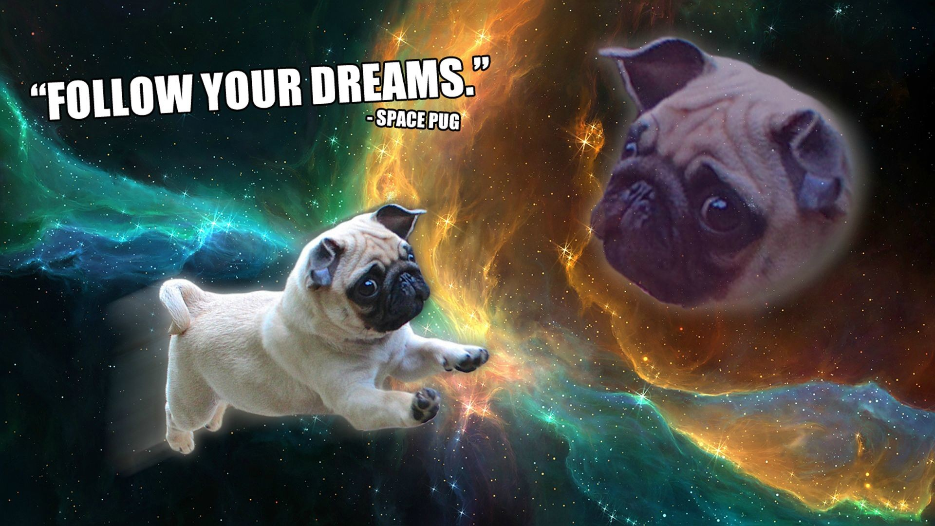 Doge Space Wallpaper 69 Images