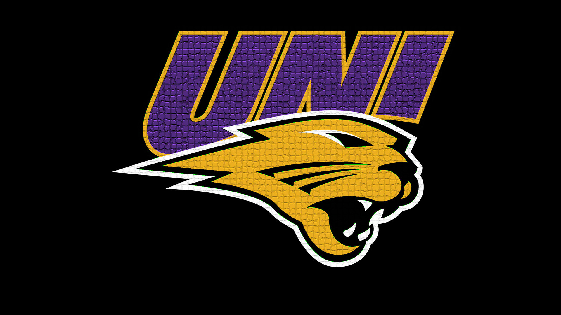 1920x1080 University Of Northern Iowa Panthers wallpaper - 417275