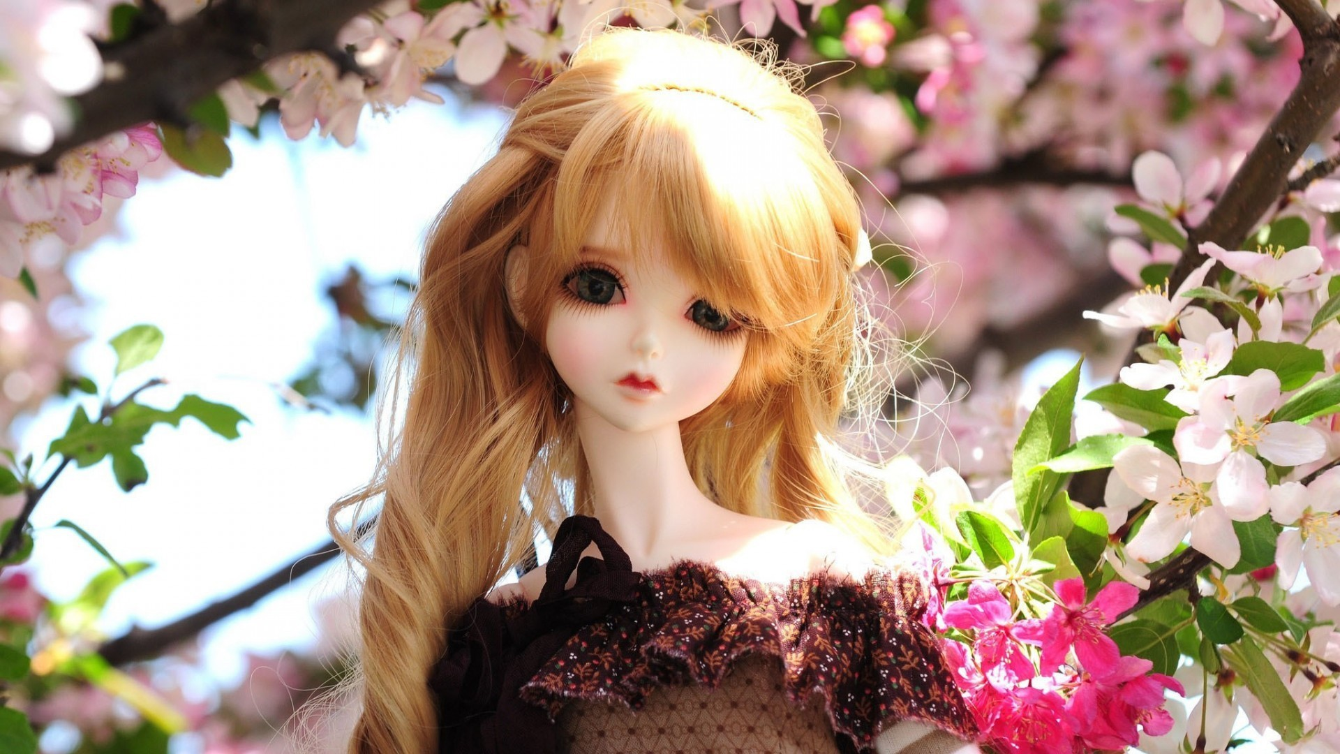 Wallpapers Of Dolls 76 Images