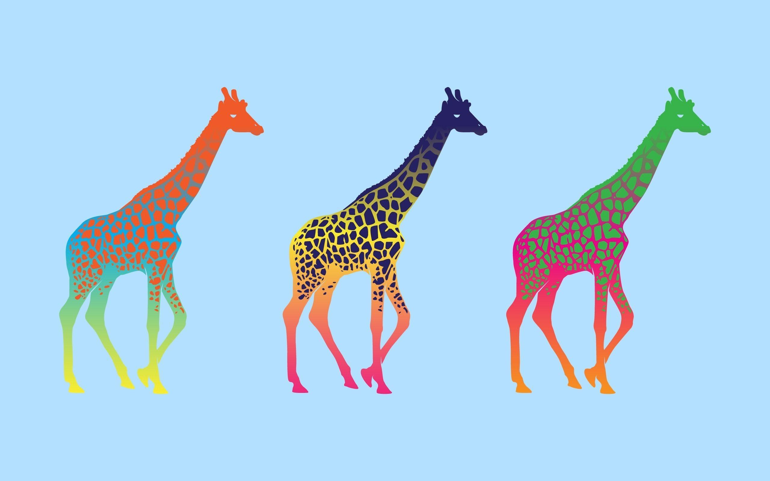 pop art desktop wallpaper 53 images