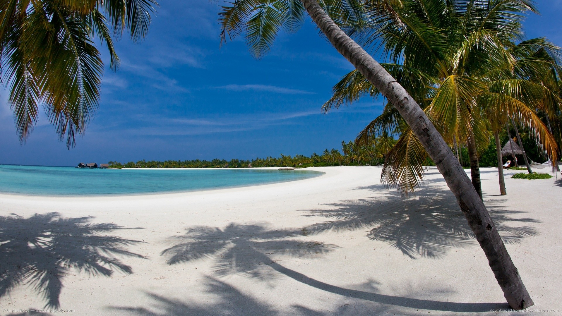 1920x1080 1440x900 Maldives Sand Beach with Palm Trees wallpaper