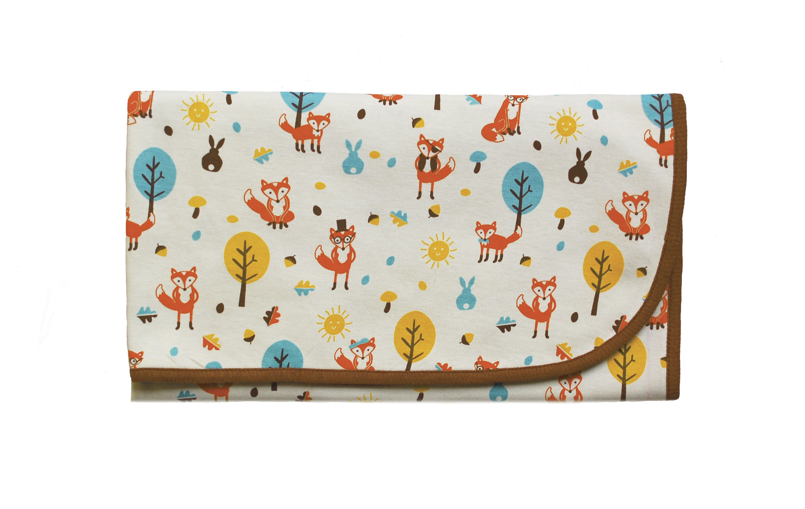 2766x1749 Foxy and friends blanket